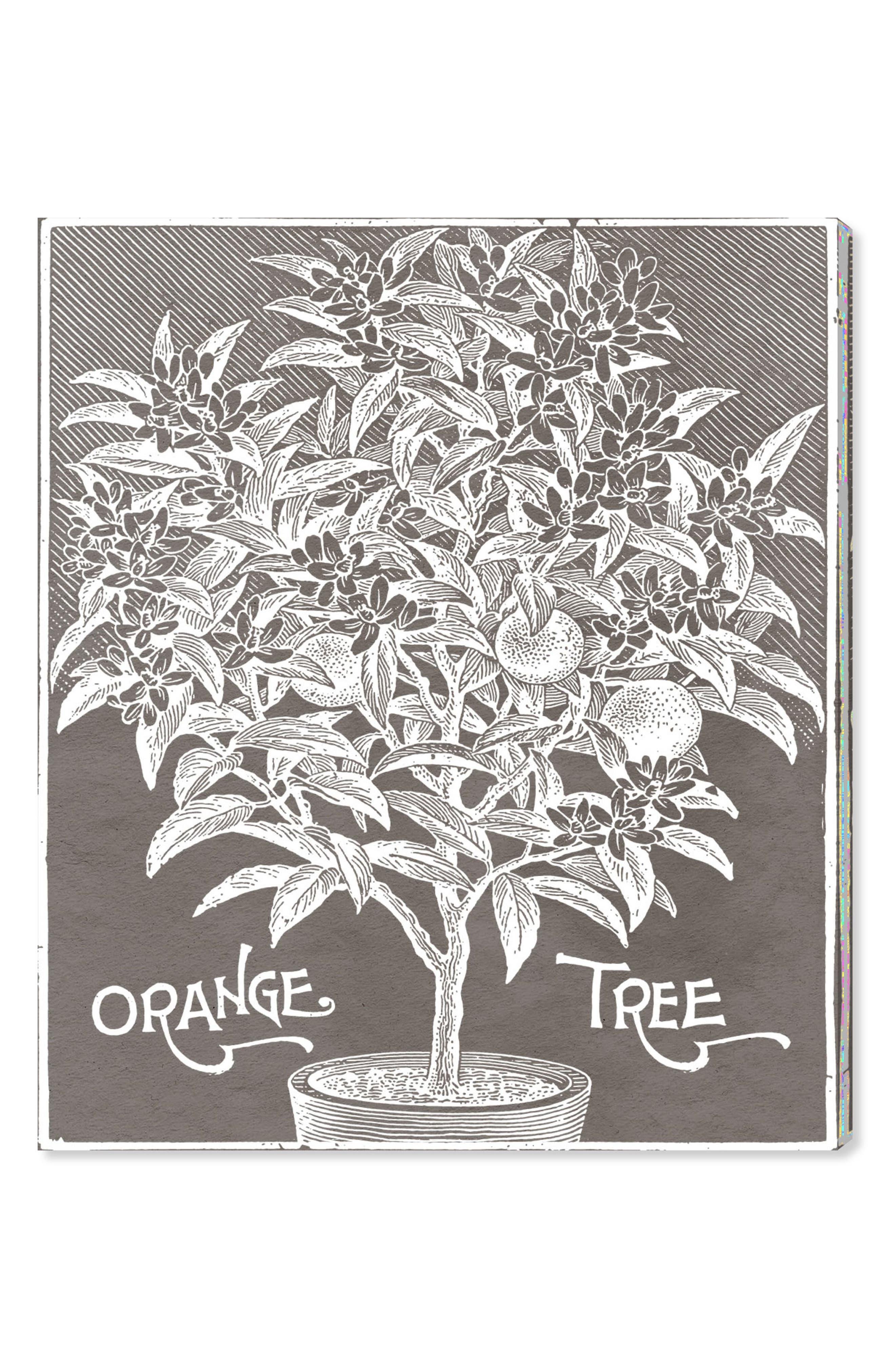 Orange Tree Canvas Wall Art,                         Main,                         color, Grey