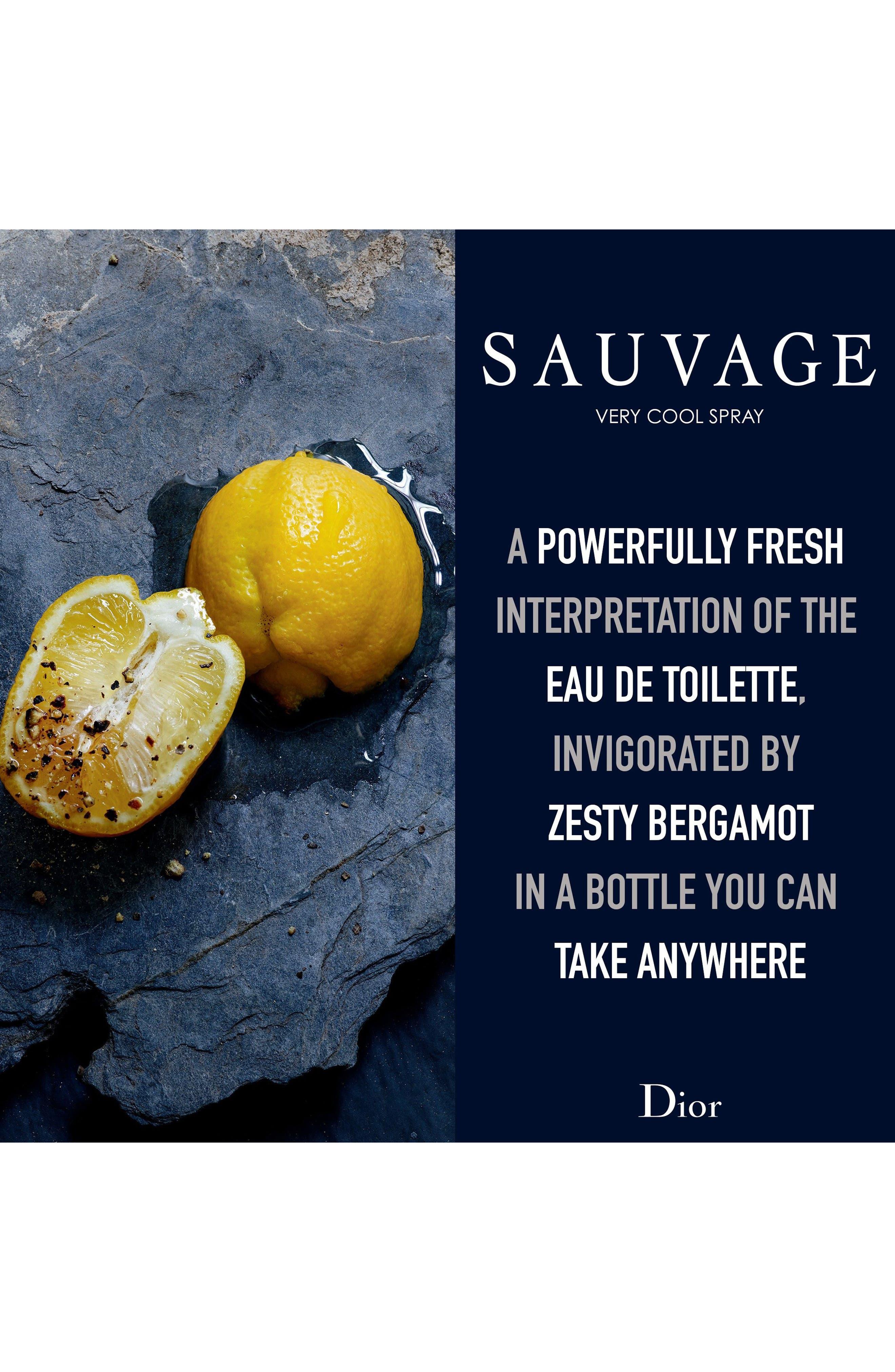 Sauvage Very Cool Spray Fresh Eau de Toilette,                             Alternate thumbnail 4, color,                             No Color