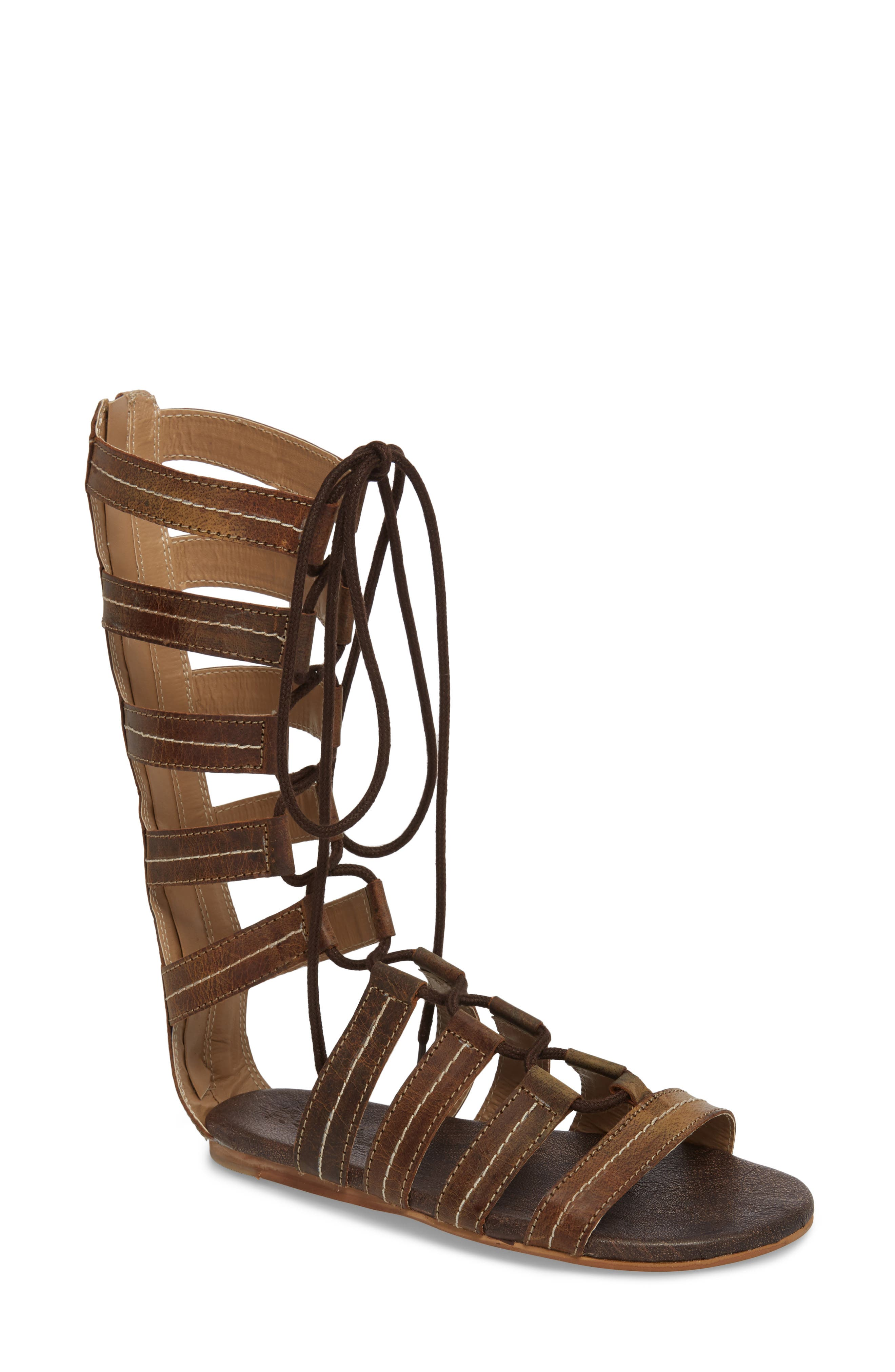 Rhea Lace-Up Gladiator Sandal,                         Main,                         color, Tan Greenland
