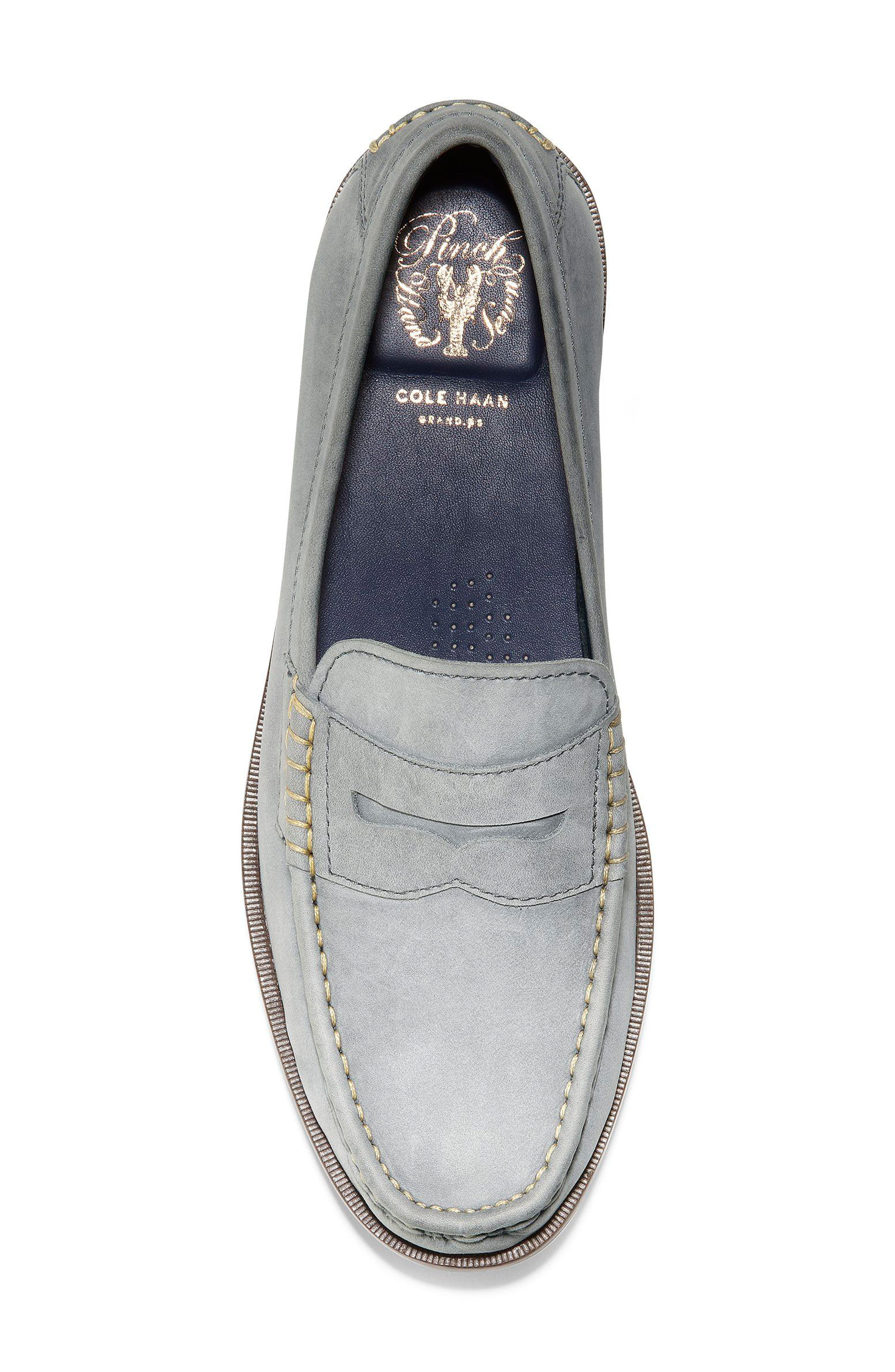 Pinch Friday Penny Loafer,                             Alternate thumbnail 5, color,                             Excalibur Nubuck