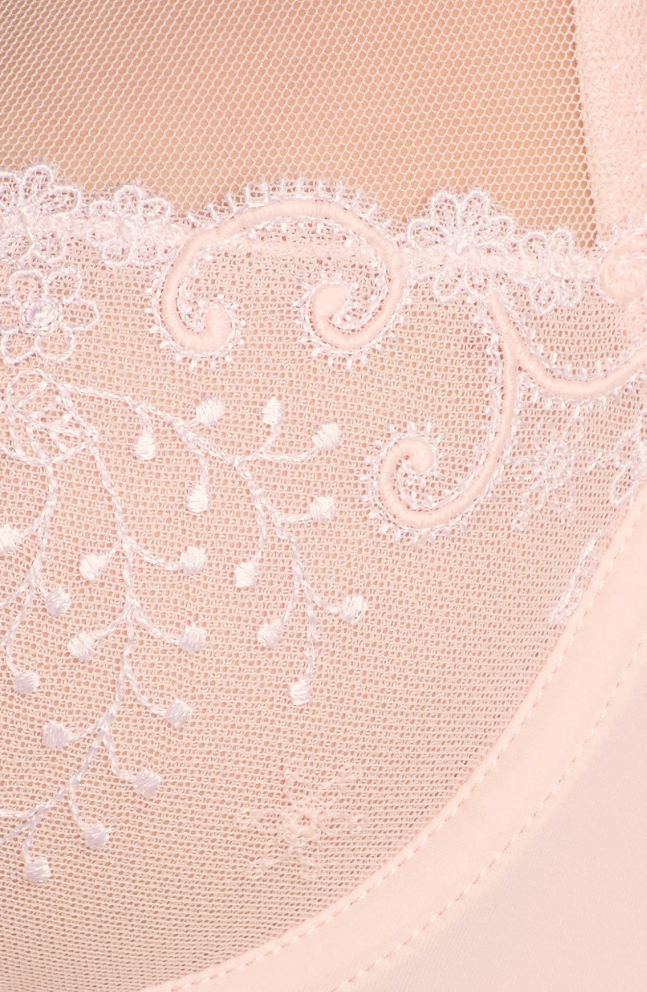 Delice Sheer Underwire Plunge Bra,                             Alternate thumbnail 10, color,                             Blush