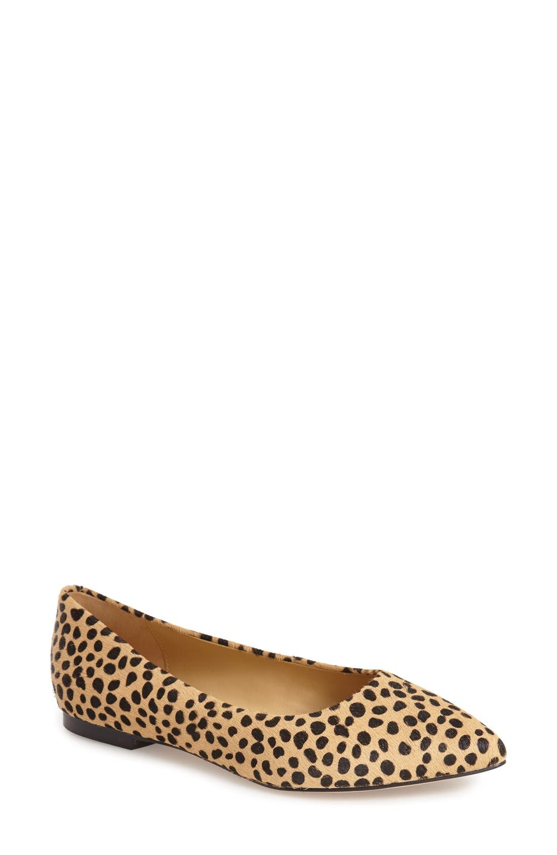 Alternate Image 1 Selected - Trotters Estee Pointed Toe Flat (Women)