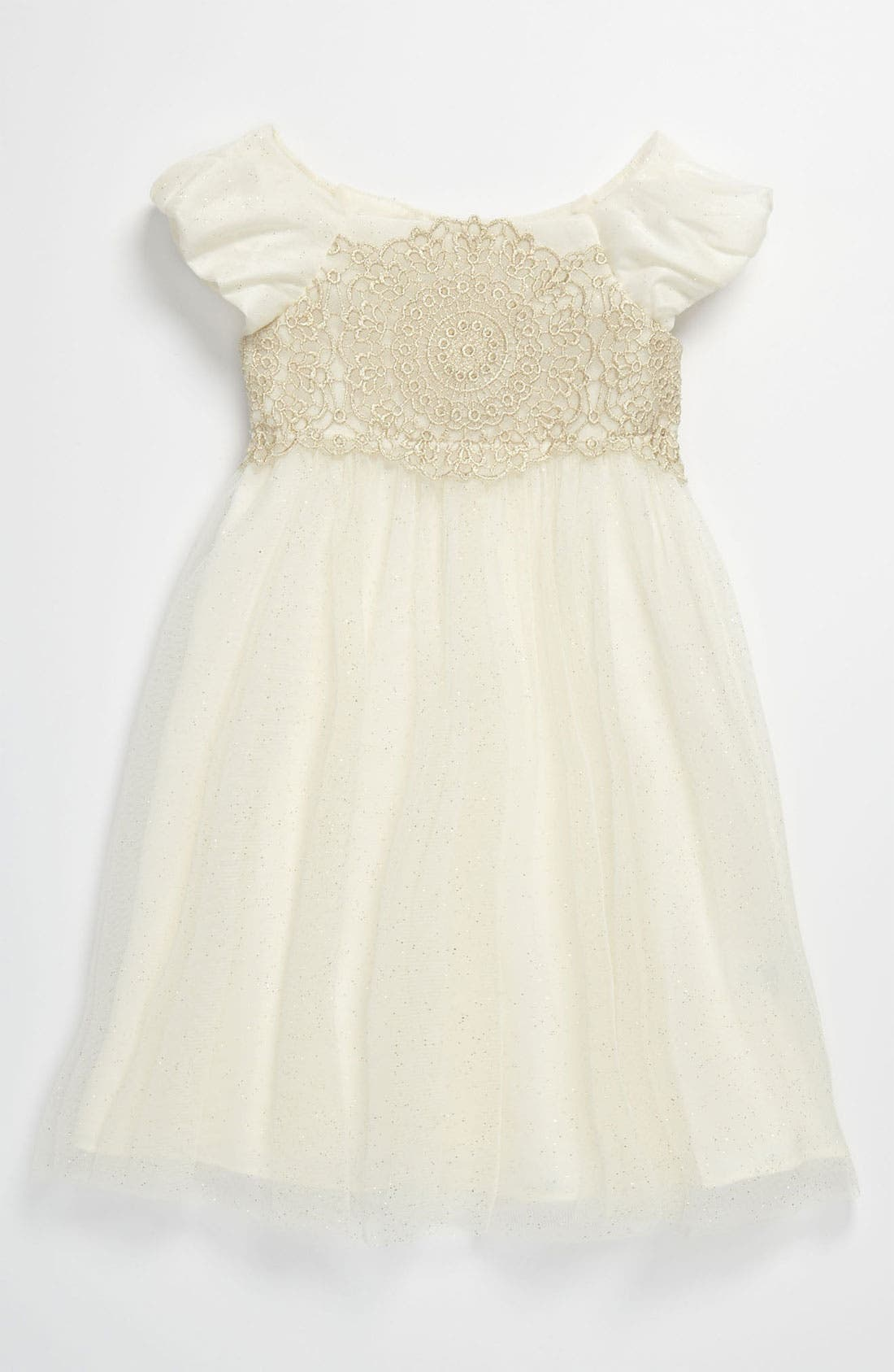 Main Image - Sweet Heart Rose Lace Empire Waist Glitter Dress (Toddler)