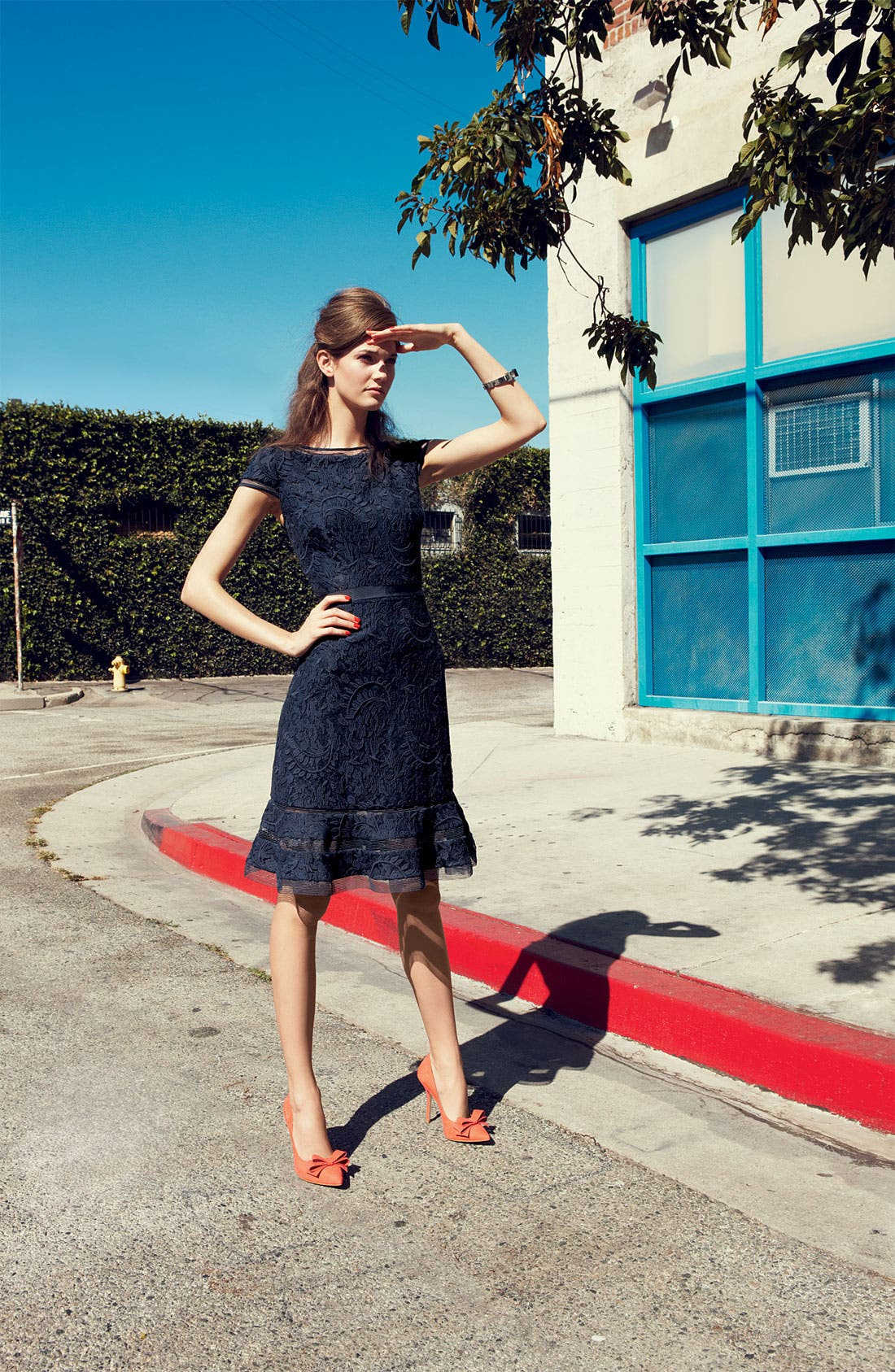Alternate Image 4  - Adrianna Papell Lace Fit & Flare Dress (Regular & Petite)