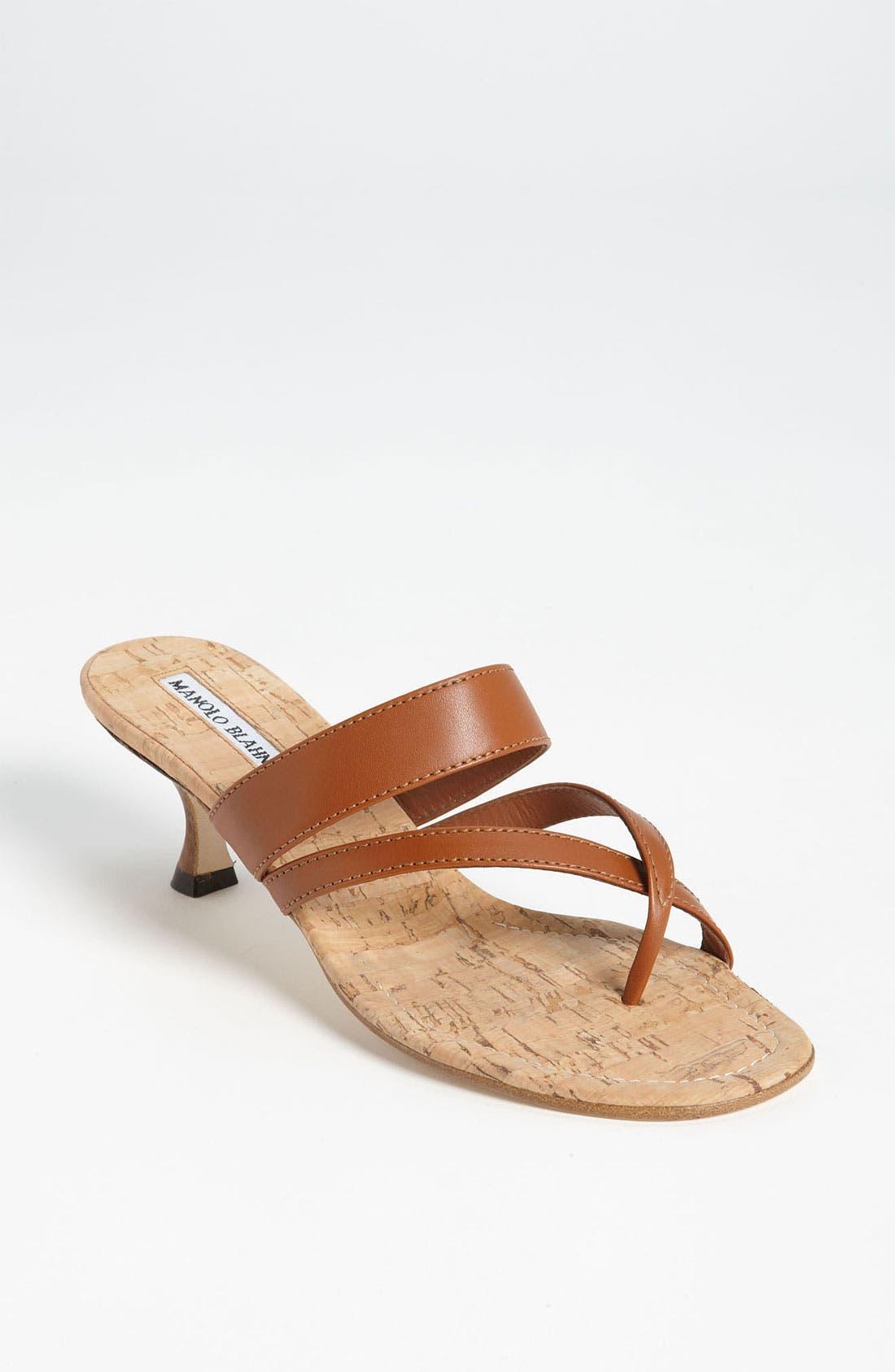 Alternate Image 1 Selected - Manolo Blahnik 'Susa' Sandal