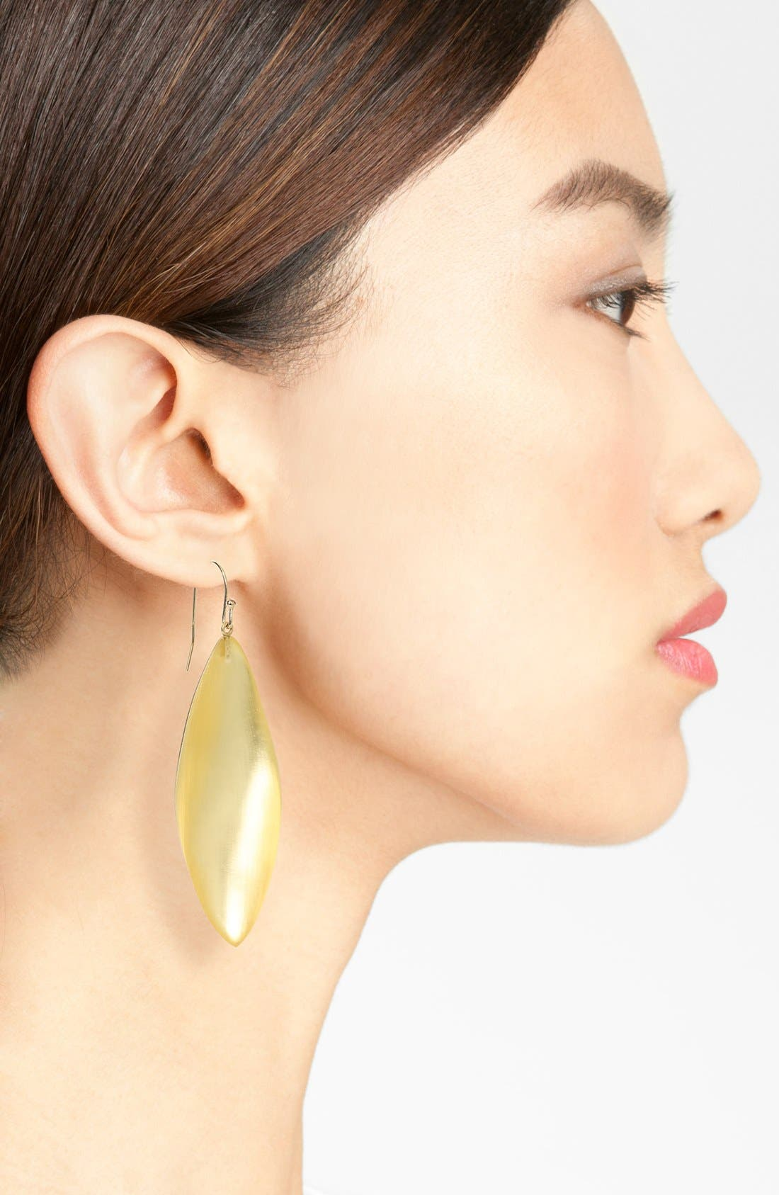 Alternate Image 2  - Alexis Bittar 'Lucite®' Long Leaf Statement Earrings