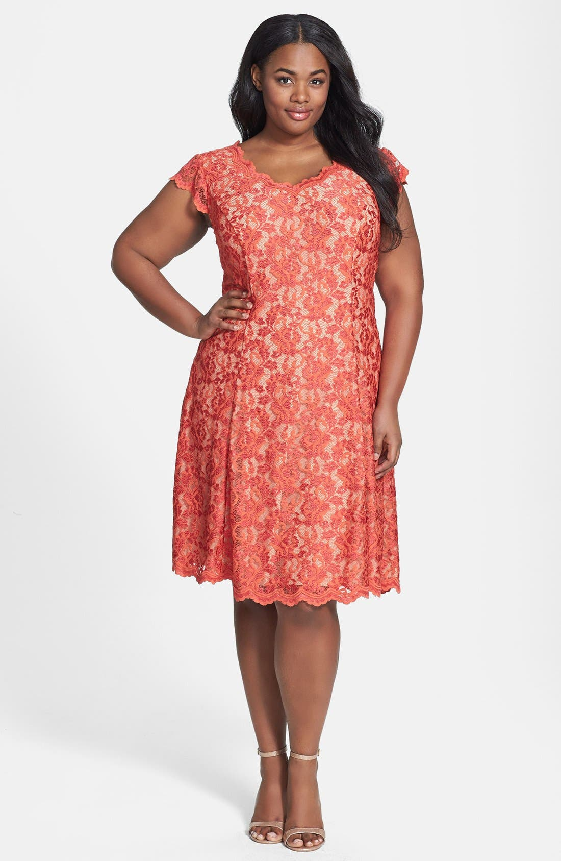 Main Image - ABS by Allen Schwartz Lace Fit & Flare Dress (Plus Size)