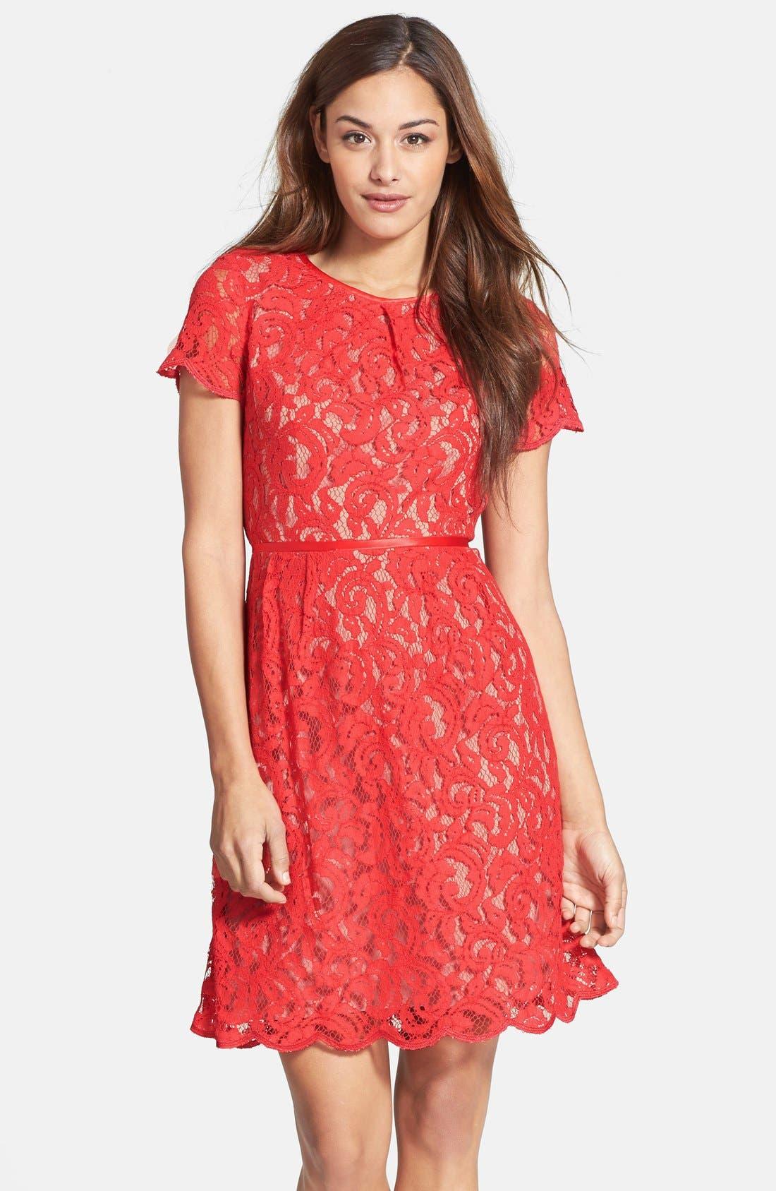 Main Image - Adrianna Papell Scalloped Lace Dress (Regular & Petite)