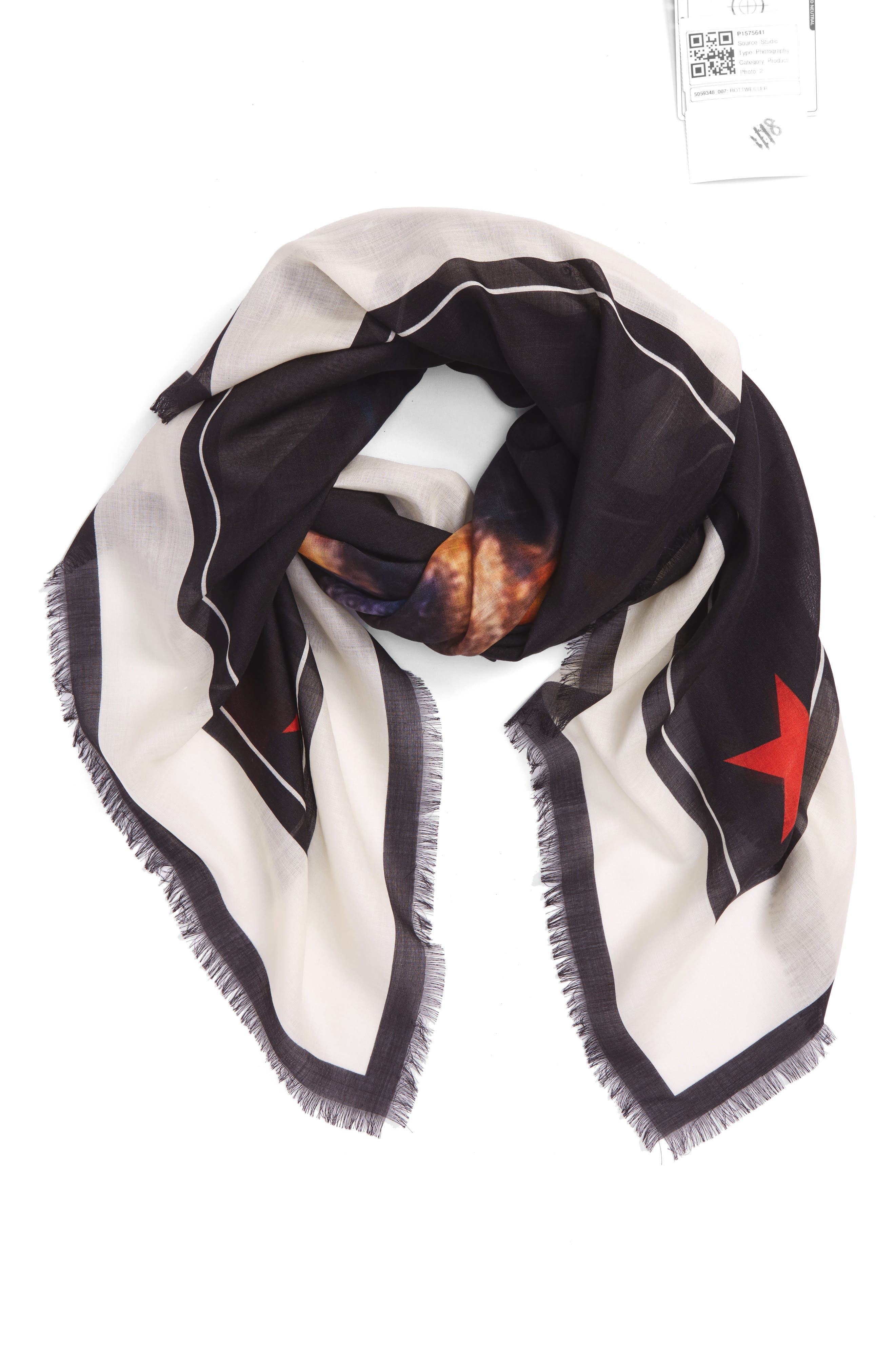 'Rottweiler' Silk Blend Scarf,                             Alternate thumbnail 2, color,                             Ivory