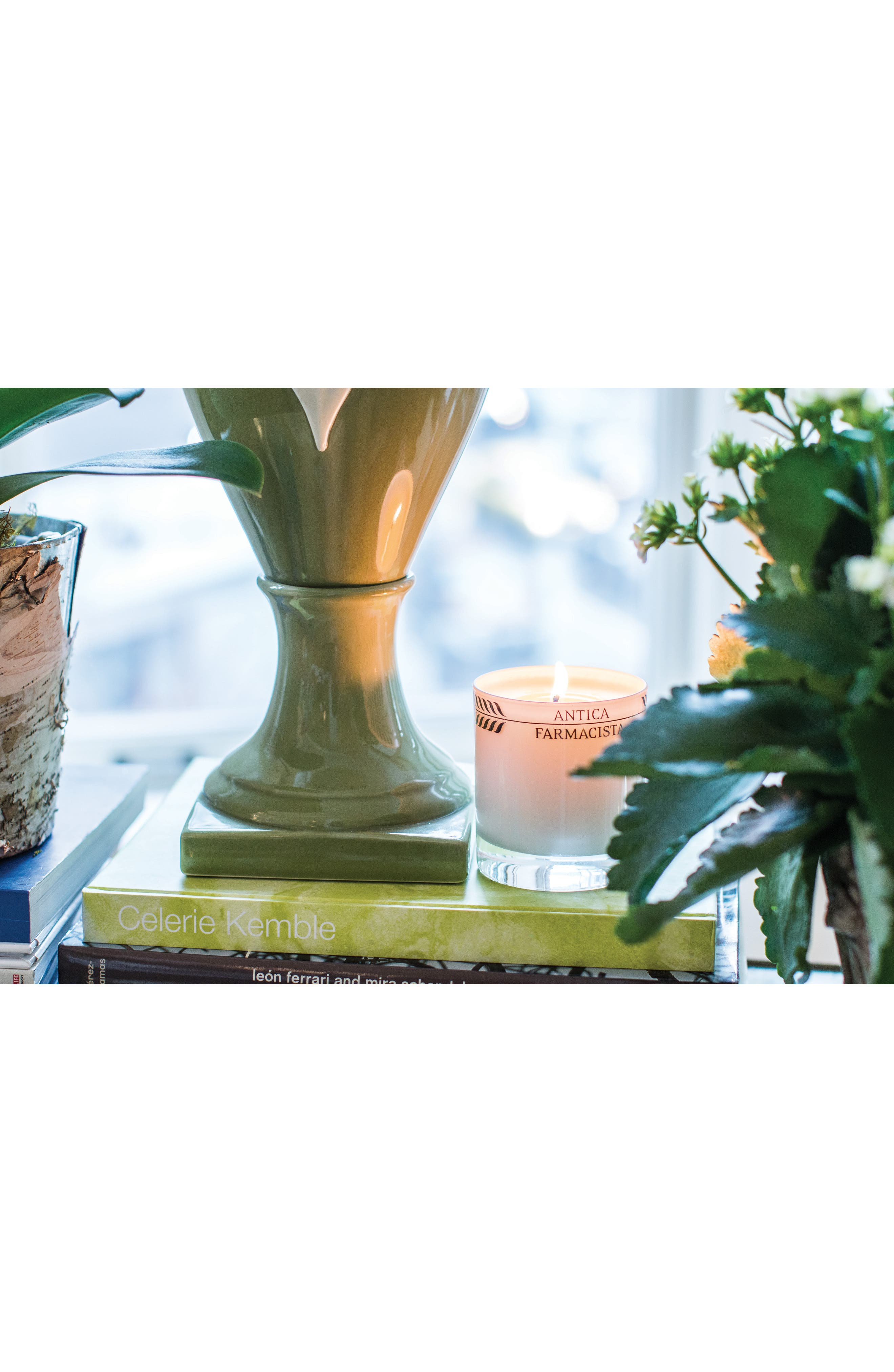 Alternate Image 3  - Antica Farmacista Lush Palm Three-Wick Candle