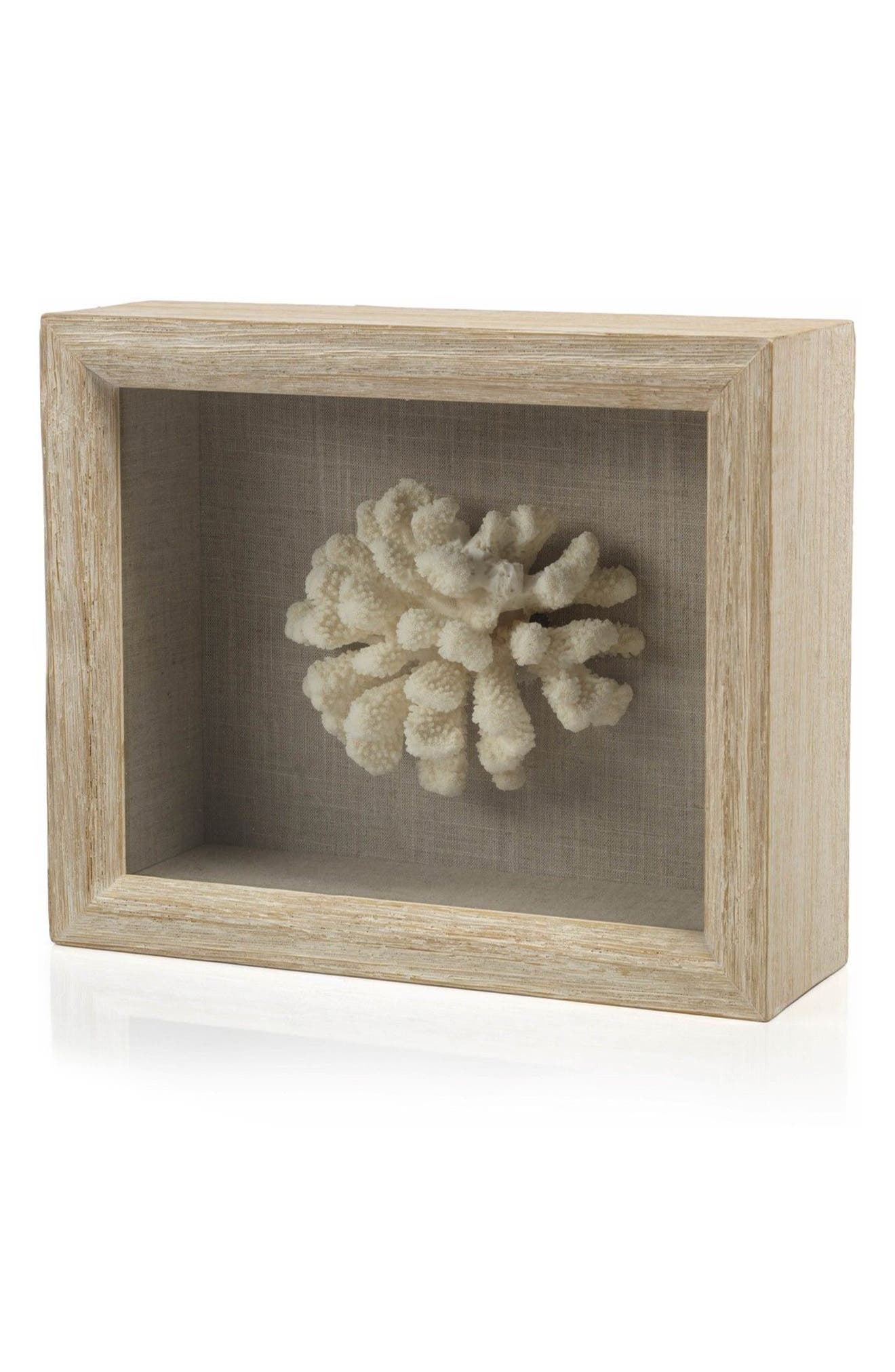 Cat's Paw Coral Shadow Box Art,                             Main thumbnail 1, color,                             Off-White/ Brown/ Beige