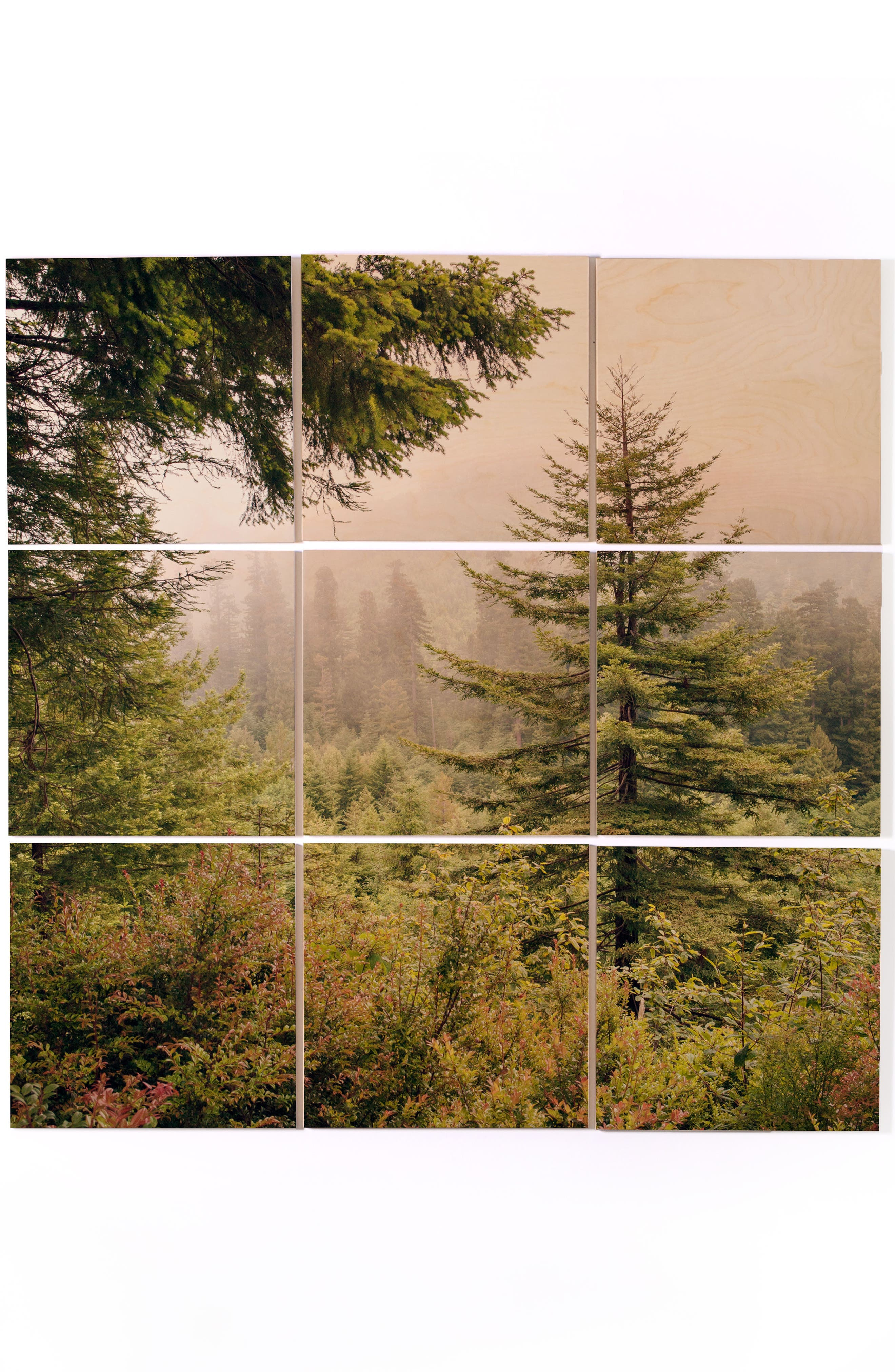 Into the Mist 9-Piece Wood Wall Mural,                         Main,                         color, Green
