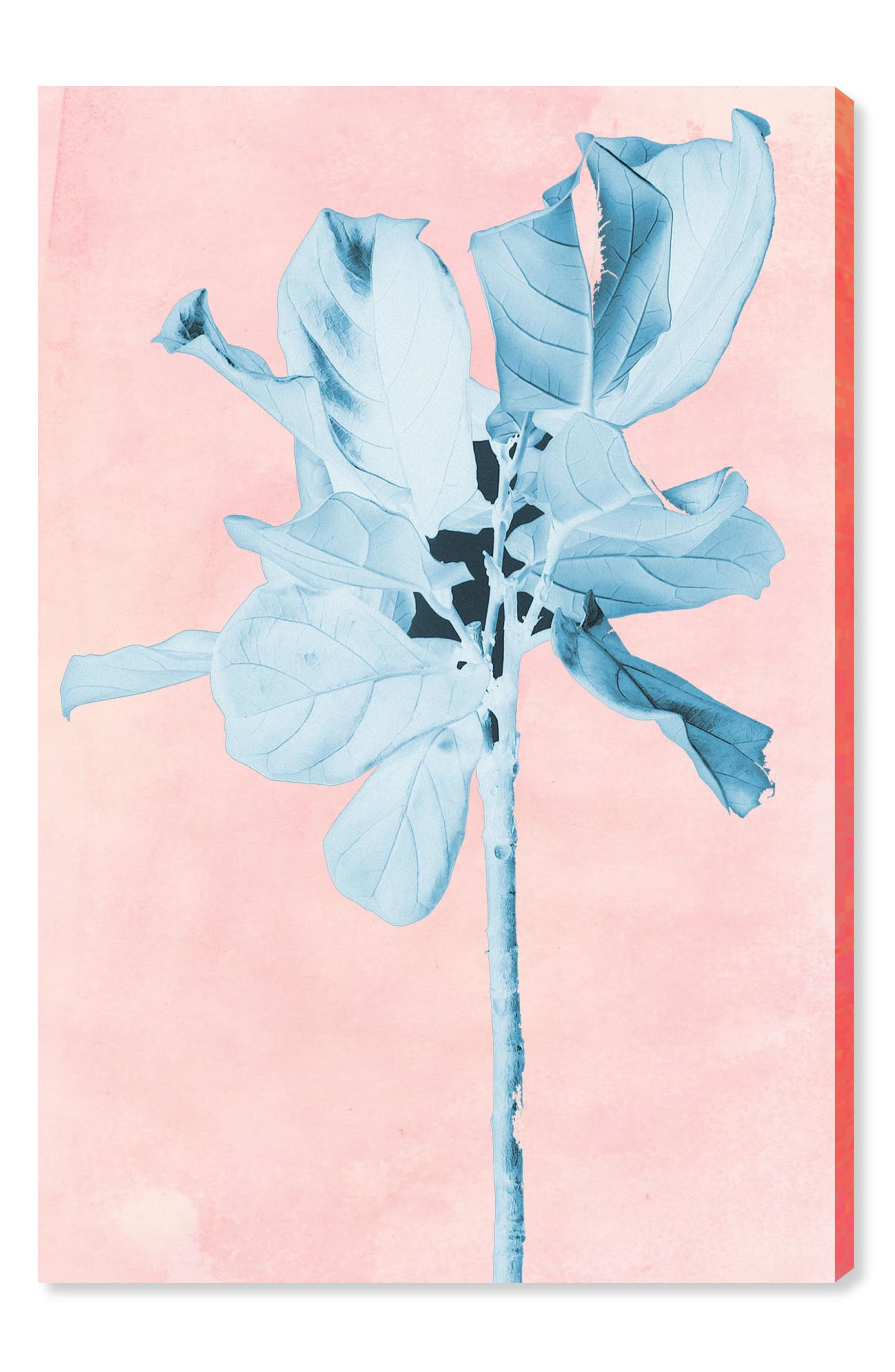 Fig Tree Leafy Blue Canvas Wall Art,                         Main,                         color, Pink
