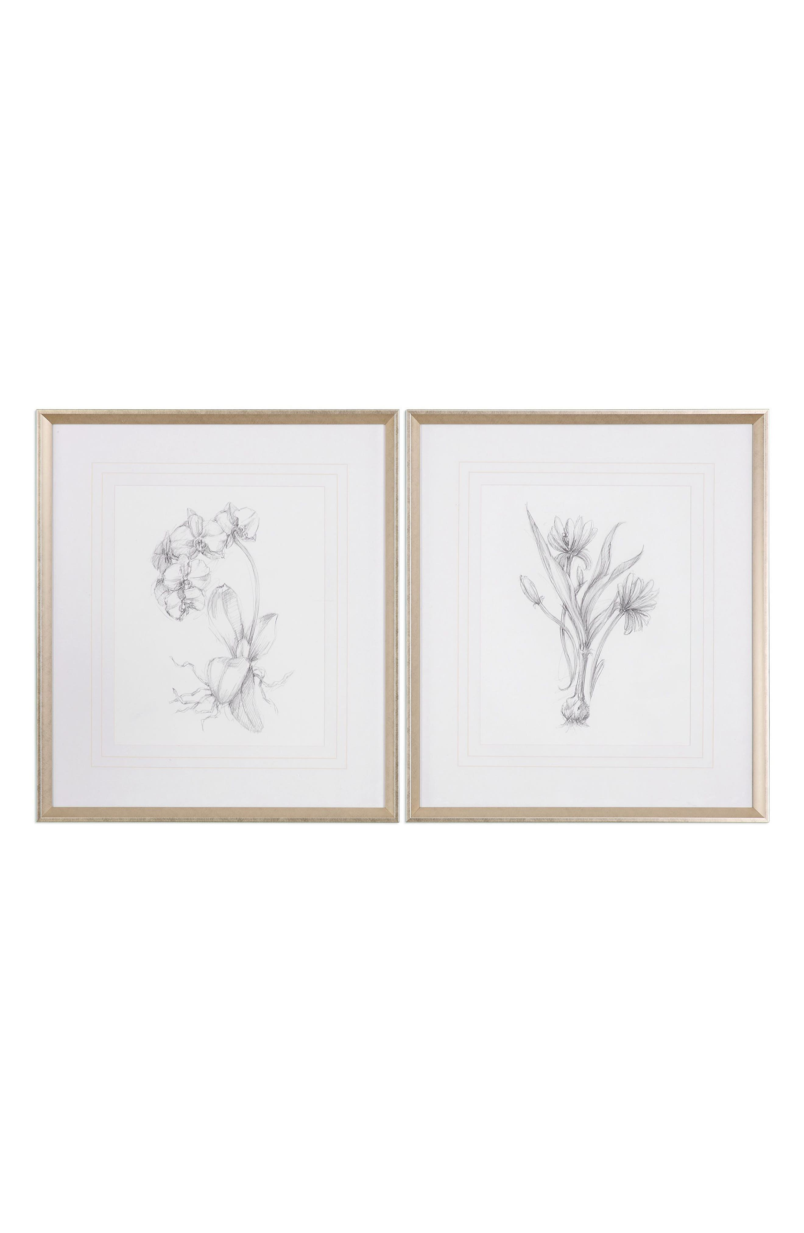 Botanical Sketch Set of 2 Art Prints,                         Main,                         color, White