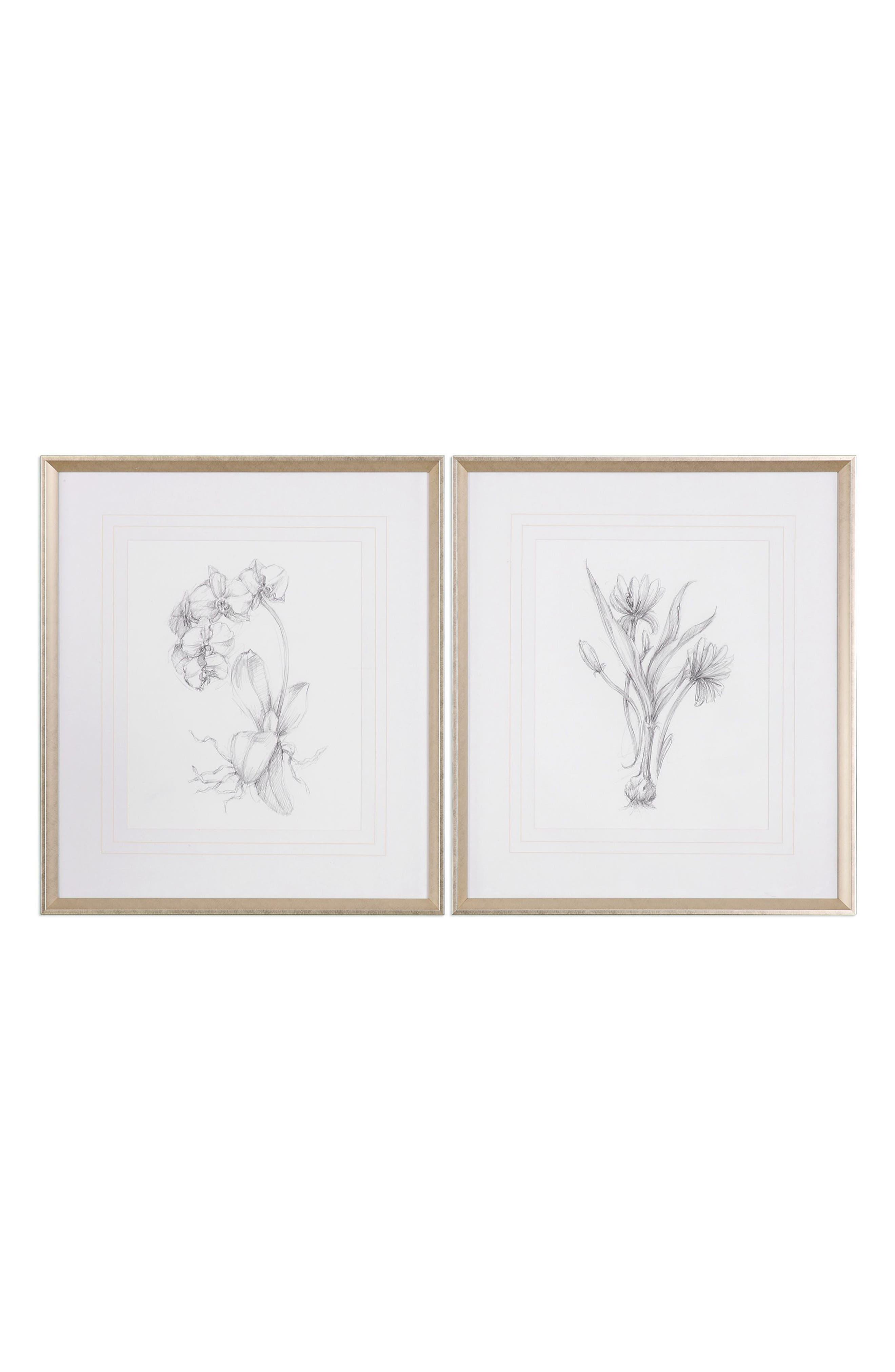 Uttermost Botanical Sketch Set of 2 Art Prints