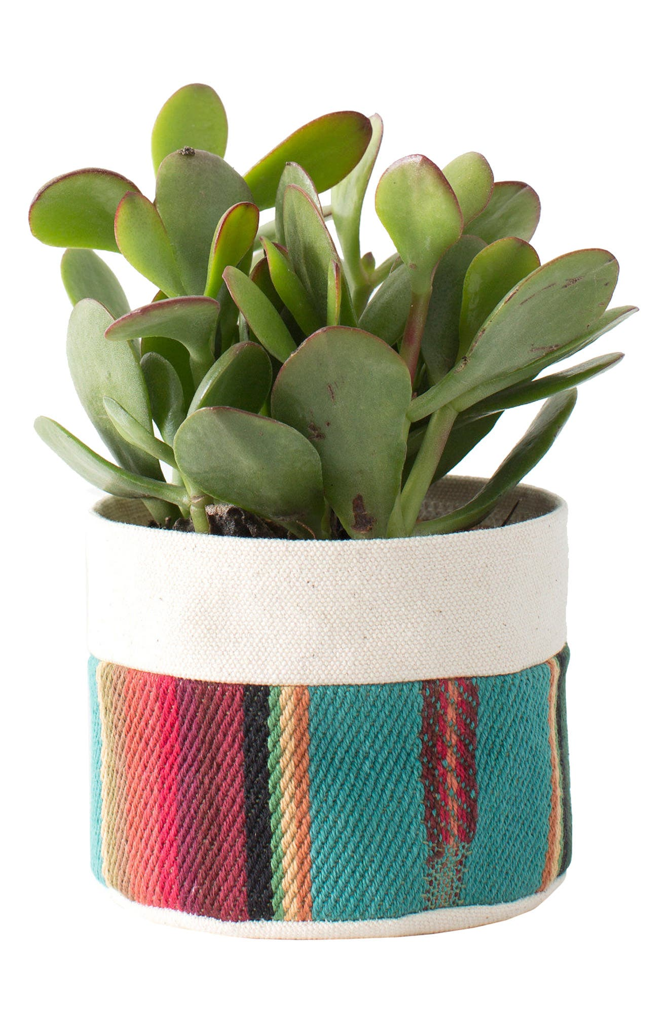 4-Inch Striped Canvas Planter,                             Main thumbnail 1, color,                             Tur/ Red