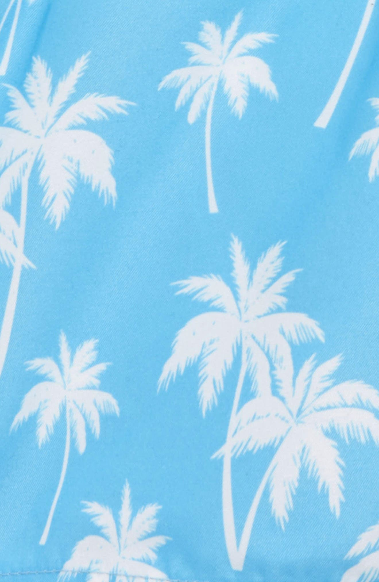 Alternate Image 2  - Little Me Palm Tree Swim Trunks (Baby Boys)