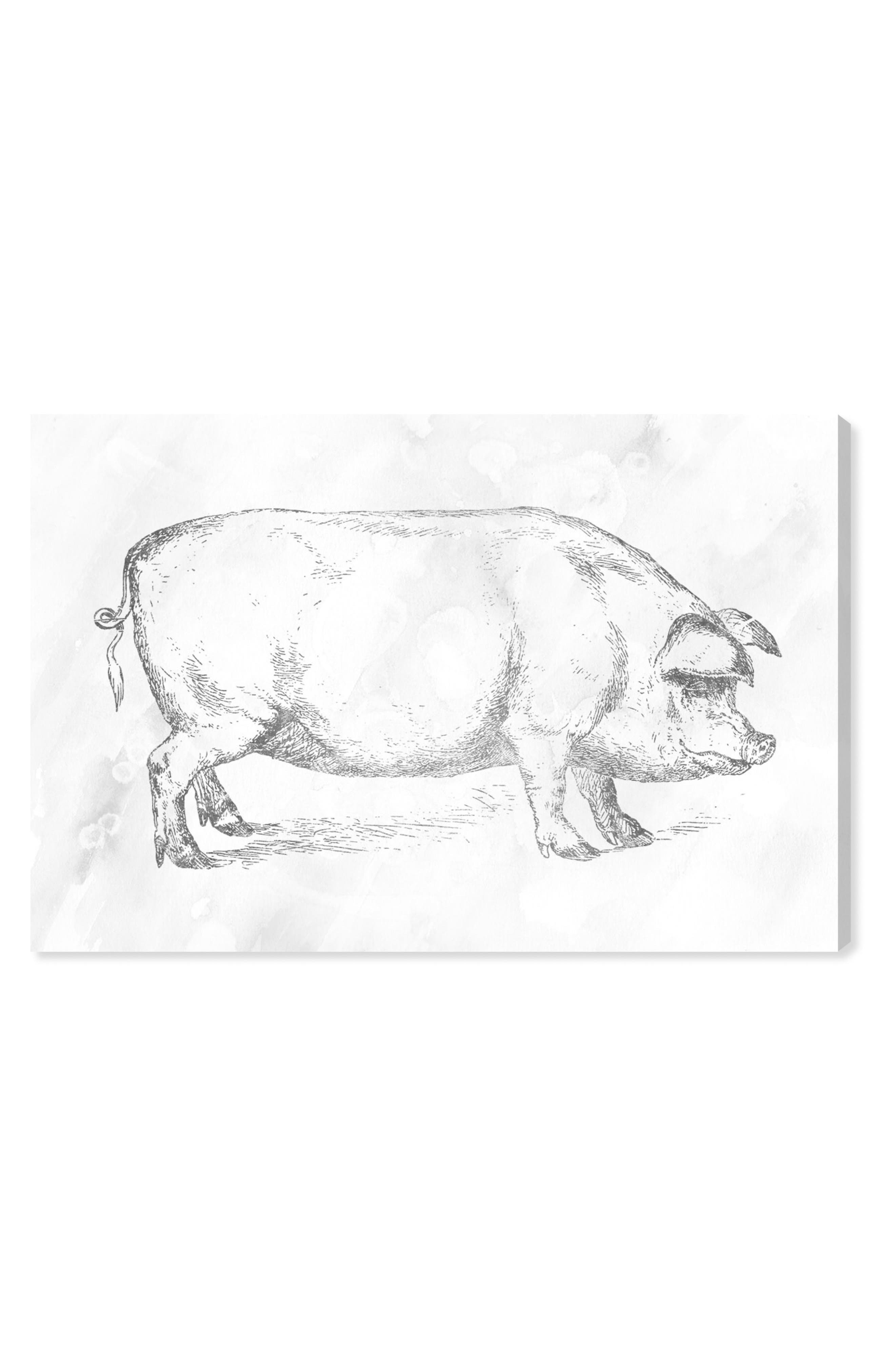 Main Image - Oliver Gal Silver Pig Canvas Wall Art