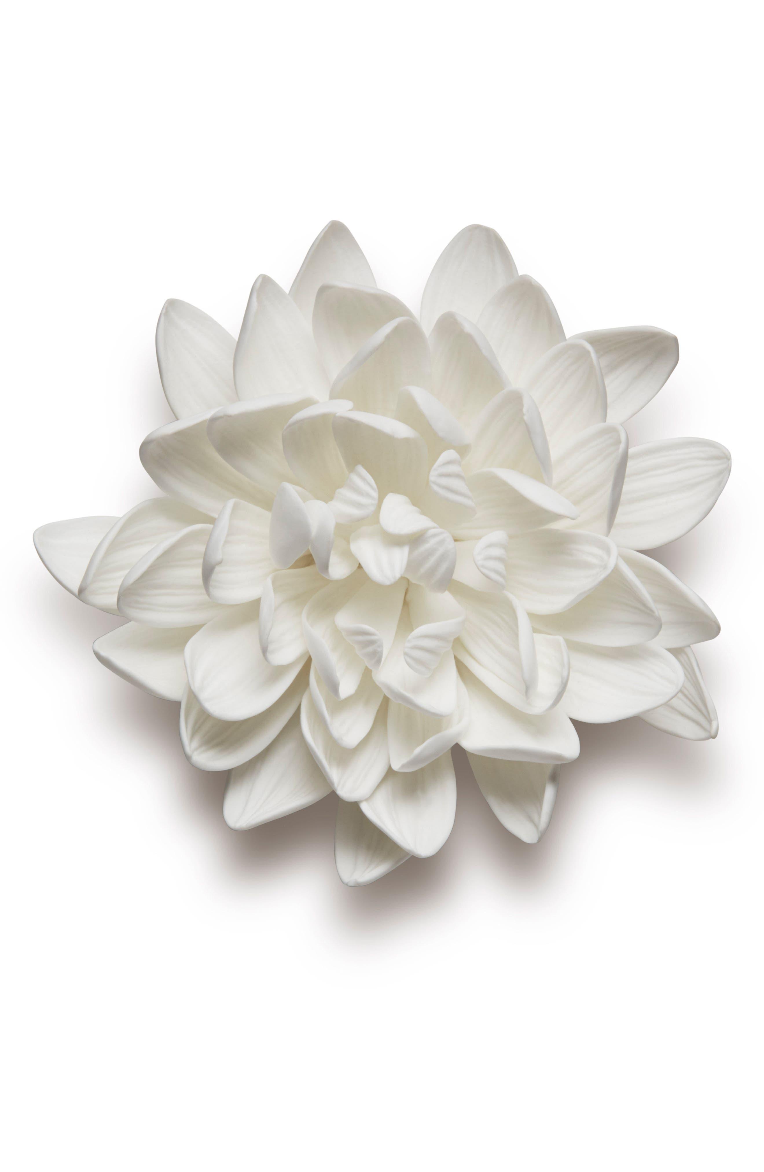 Porcelain Dahlia,                         Main,                         color, White