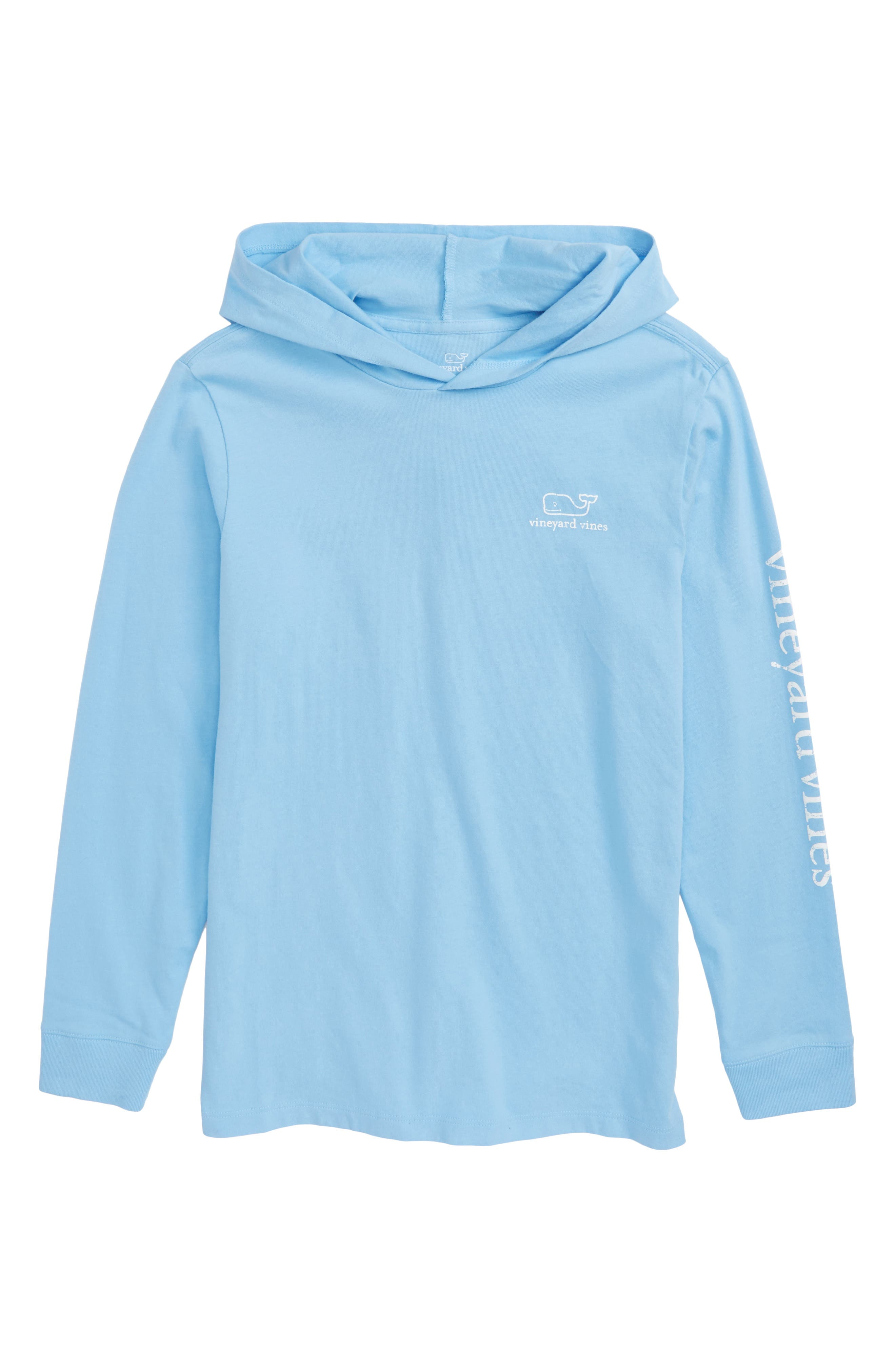 Performance Hooded Pullover,                         Main,                         color, Ocean Breeze