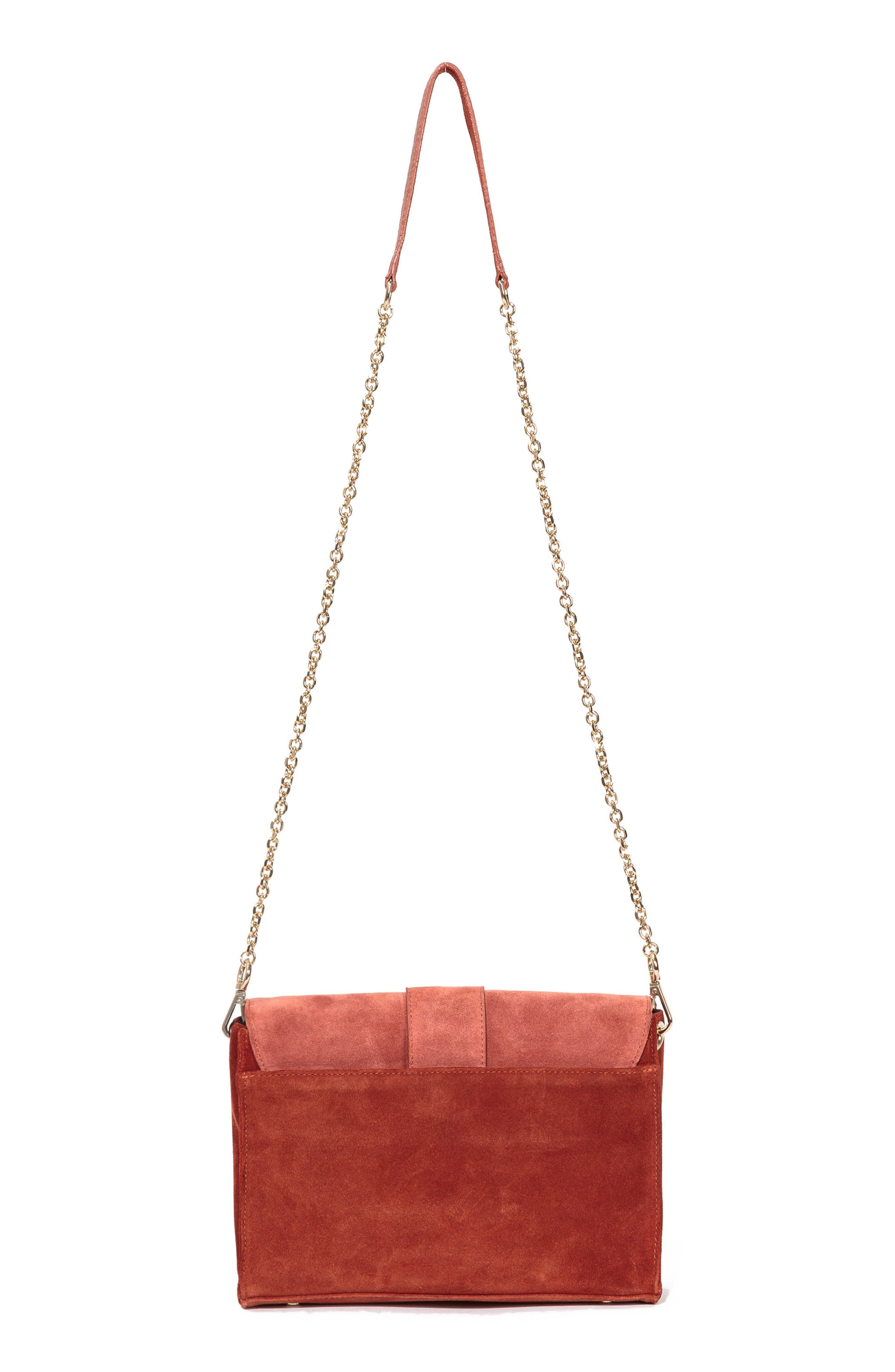 Tiger Crossbody Bag,                             Alternate thumbnail 3, color,                             Terracotta