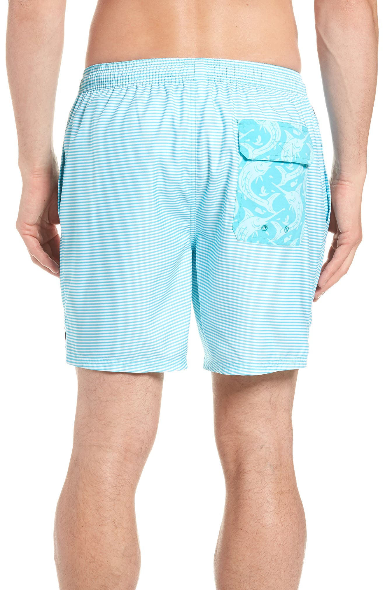 Chappy Stripe Swim Trunks,                             Alternate thumbnail 2, color,                             Turquoise