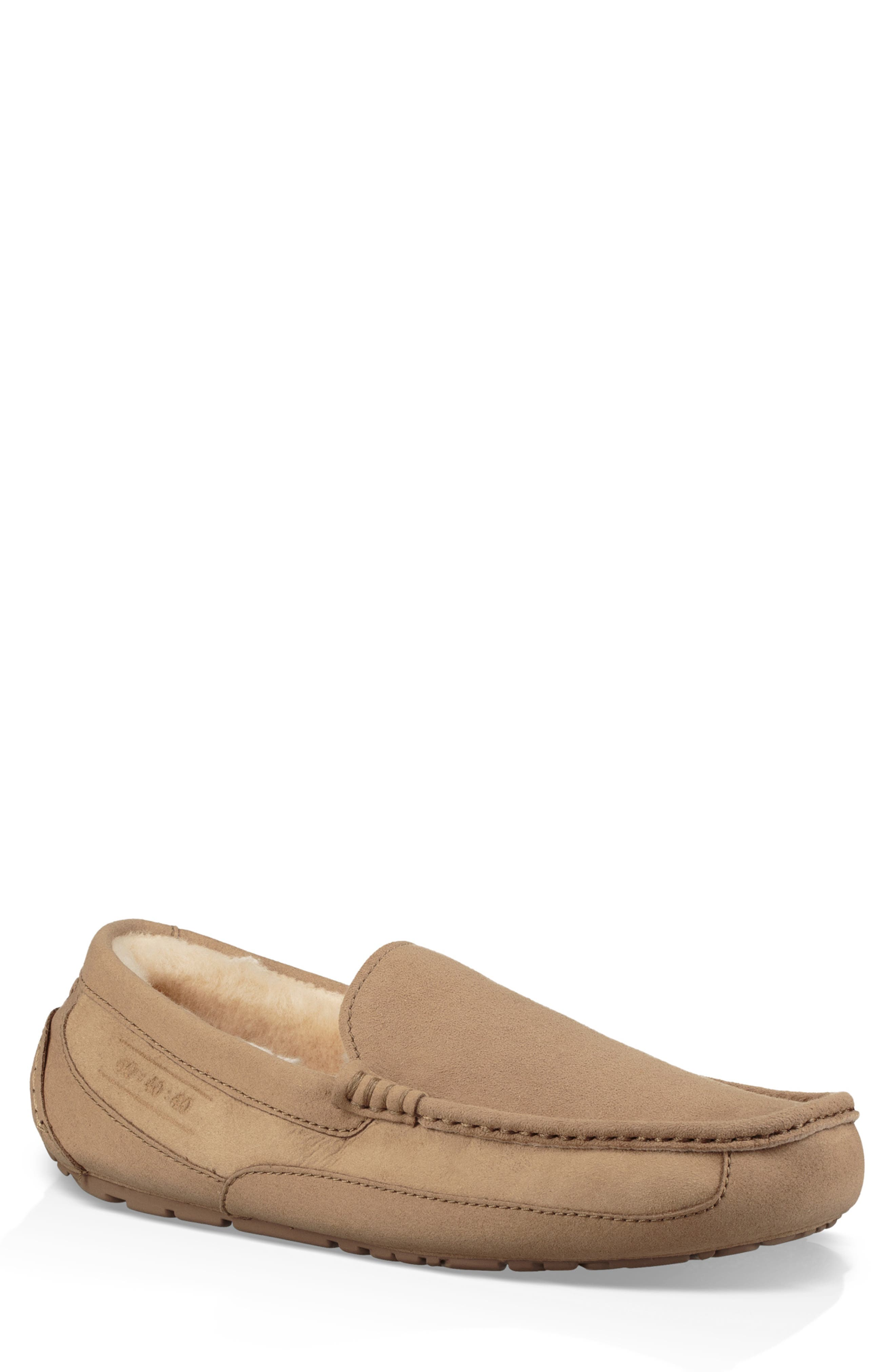 UGG® Ascot 40:40:40 Anniversary Slipper (Men) (Limited Edition)