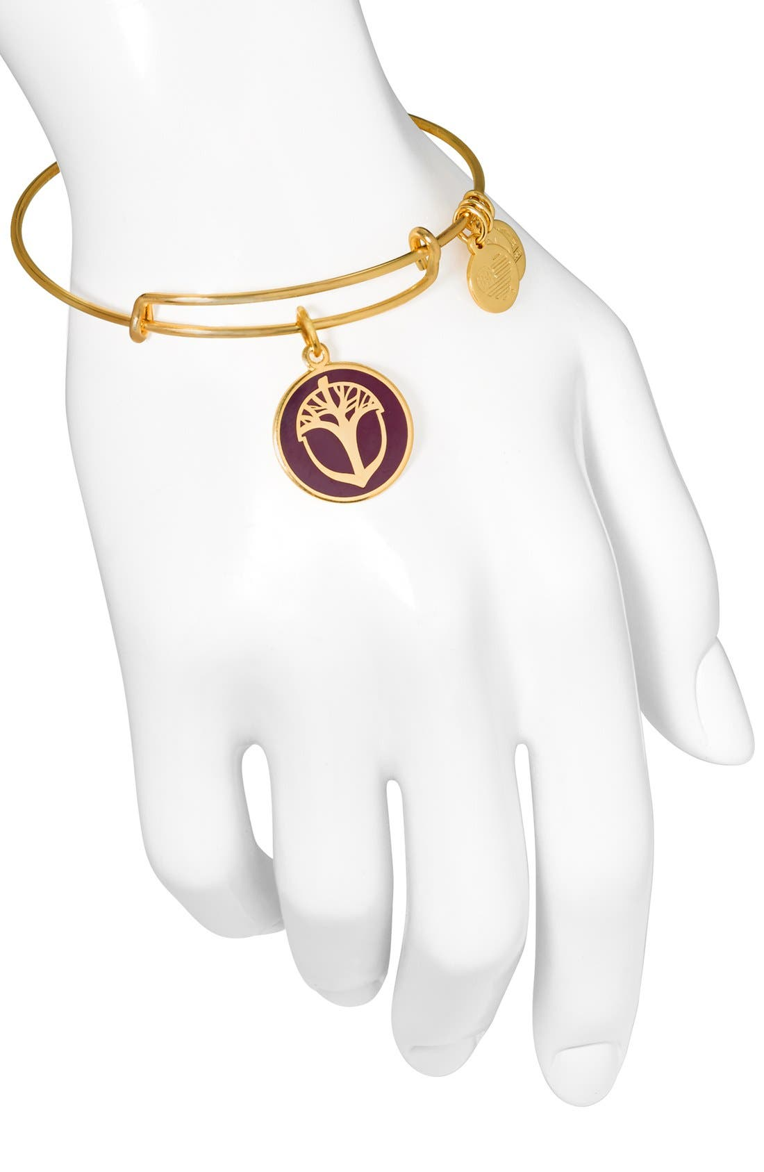 Alternate Image 4  - Alex and Ani 'Unexpected Miracles' Expandable Bangle
