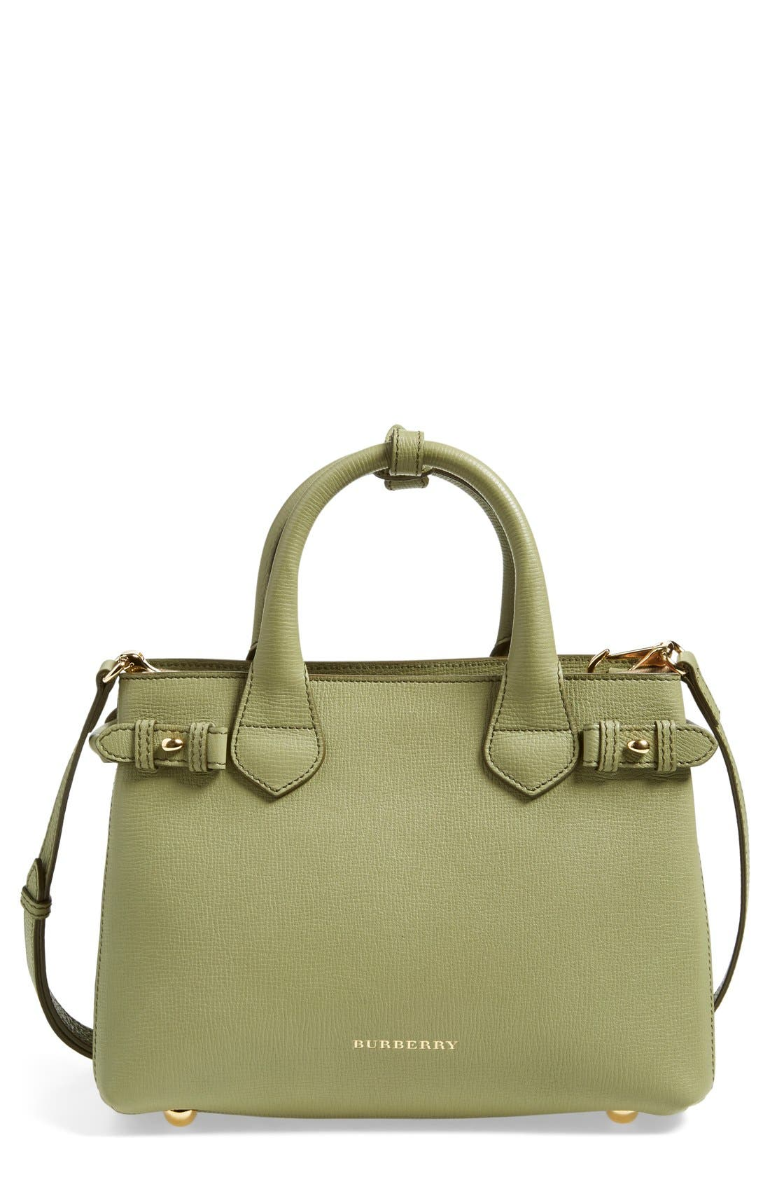 'Small Banner' Leather Tote,                         Main,                         color, Pale Pistachio Green