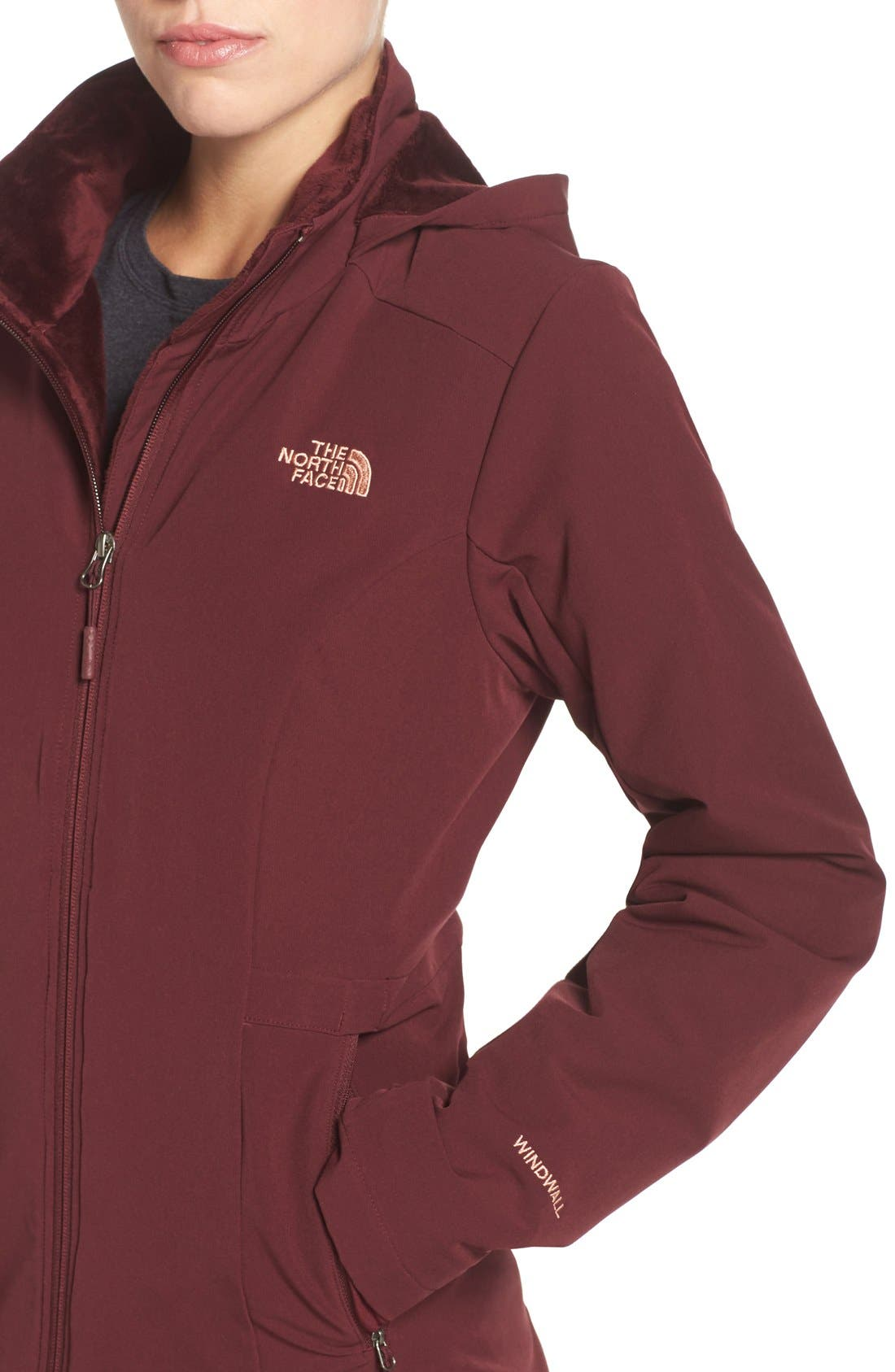 Alternate Image 4  - The North Face 'Shelbe Raschel' Softshell Jacket