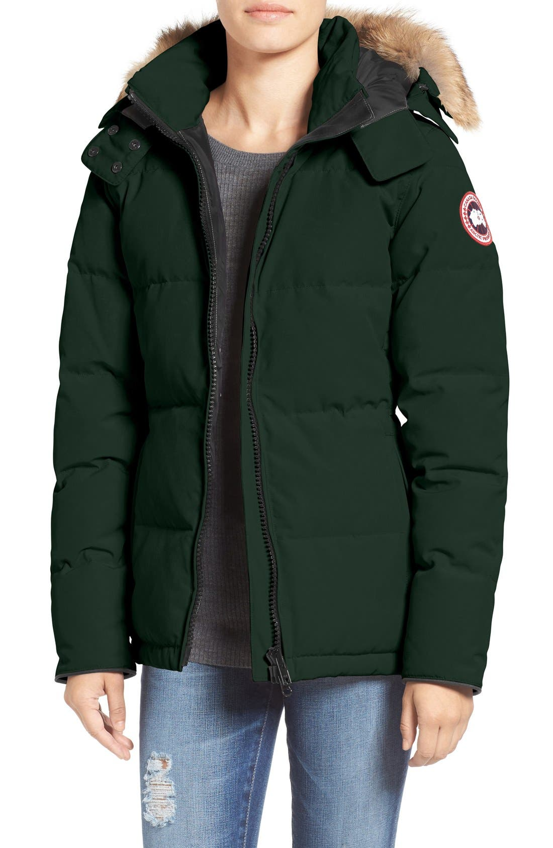 'Chelsea' Slim Fit Down Parka with Genuine Coyote Fur Trim,                             Main thumbnail 1, color,                             Algonquin Green