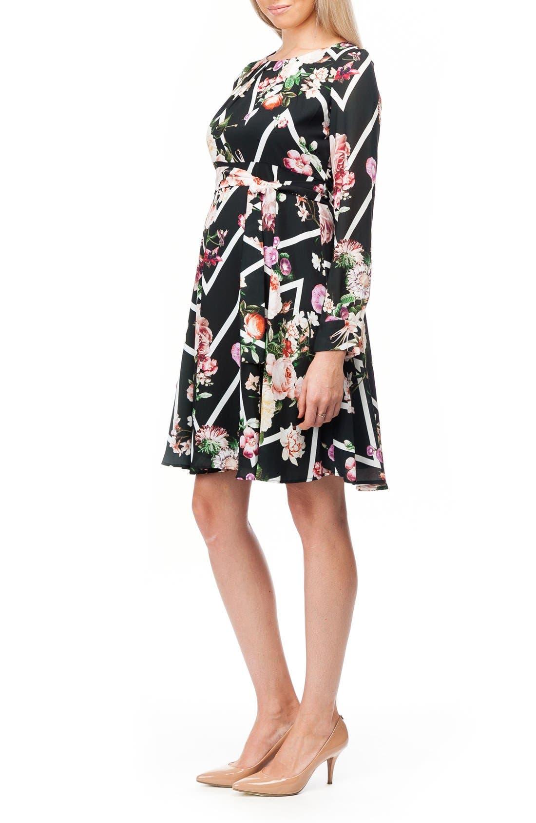 Alternate Image 3  - PIETRO BRUNELLI Stresa Chiffon Maternity Dress