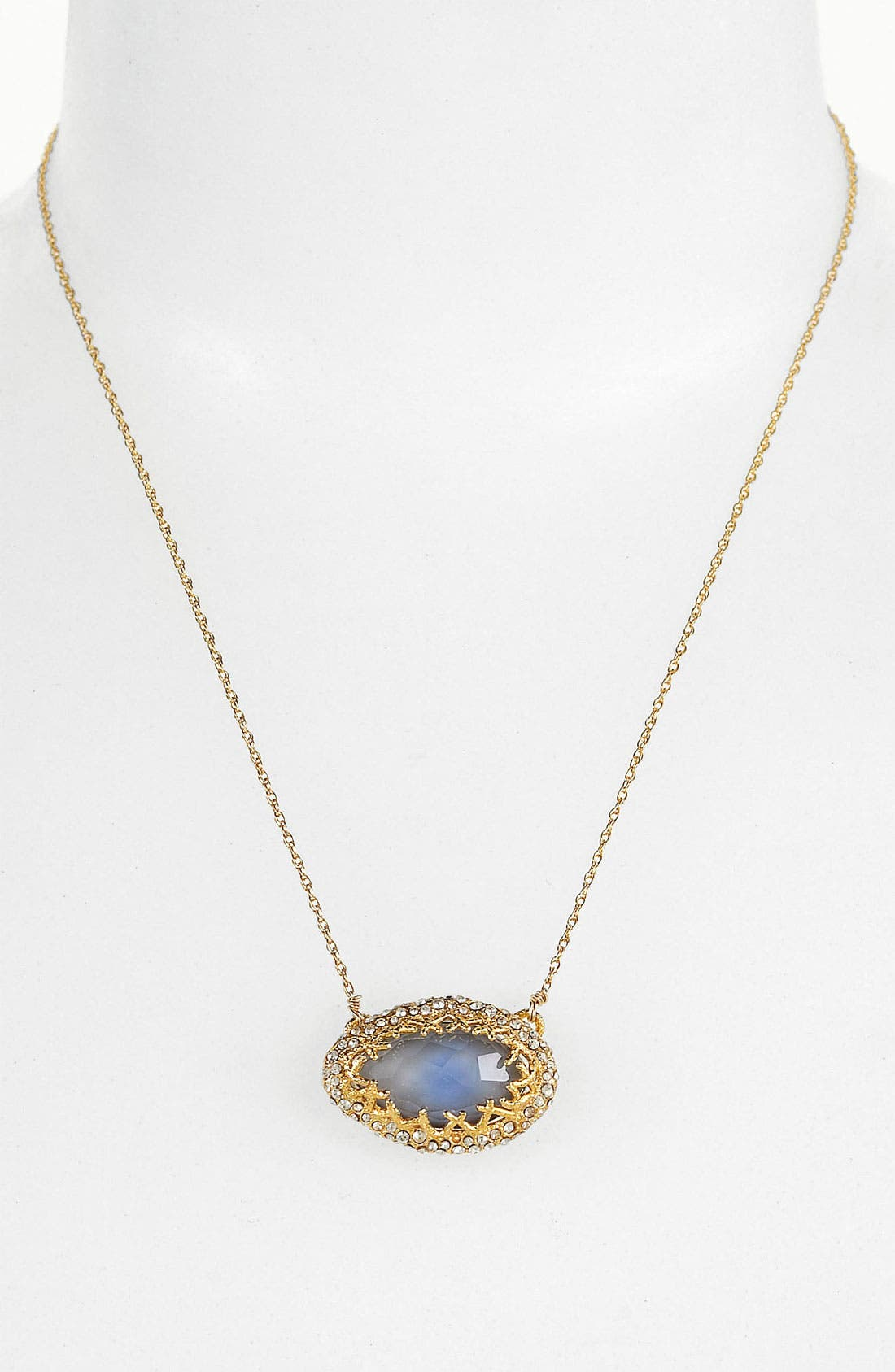 Alternate Image 1 Selected - Alexis Bittar 'Elements' Pendant Necklace (Nordstrom Exclusive)