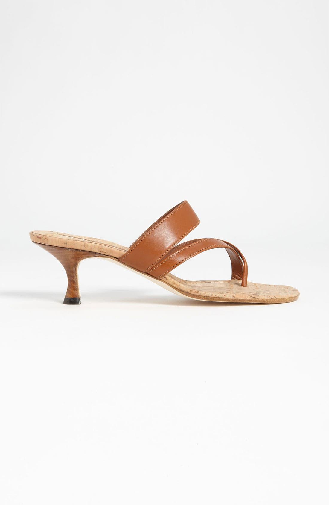 Alternate Image 4  - Manolo Blahnik 'Susa' Sandal