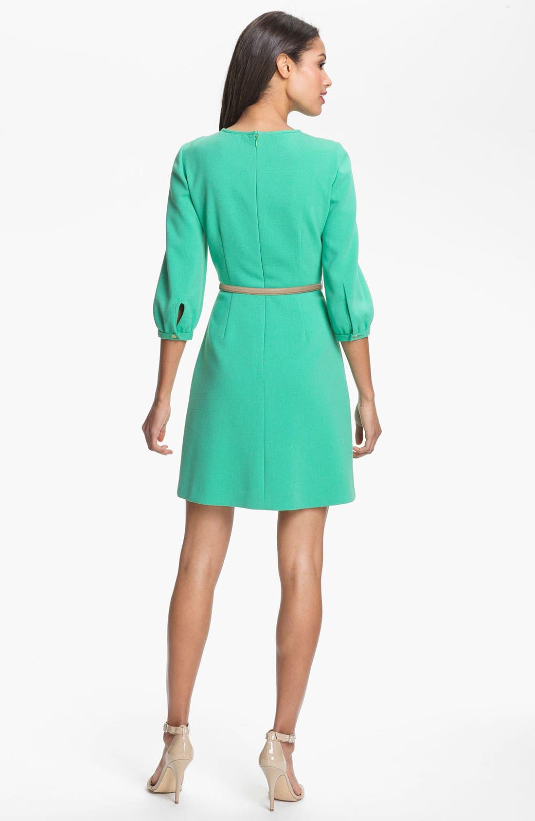 Alternate Image 2  - Eliza J Blouson Sleeve Belted A-Line Dress