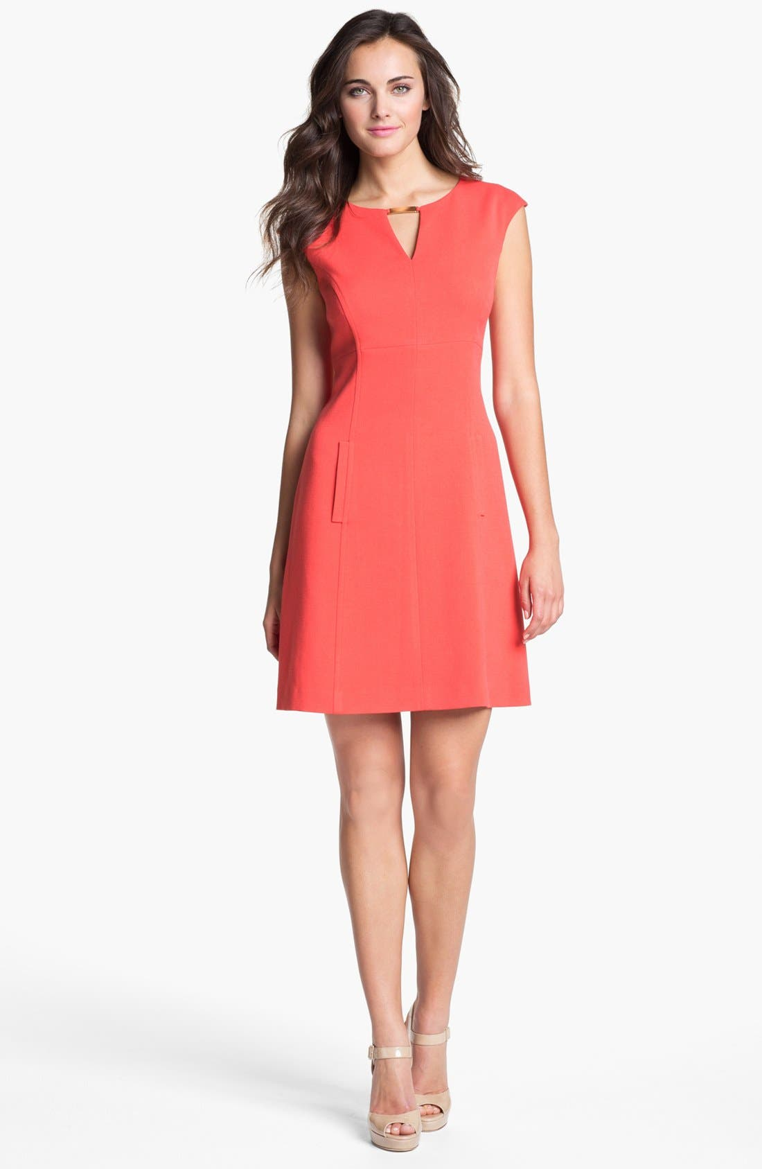 Alternate Image 1 Selected - Eliza J Seamed Knit A-Line Dress