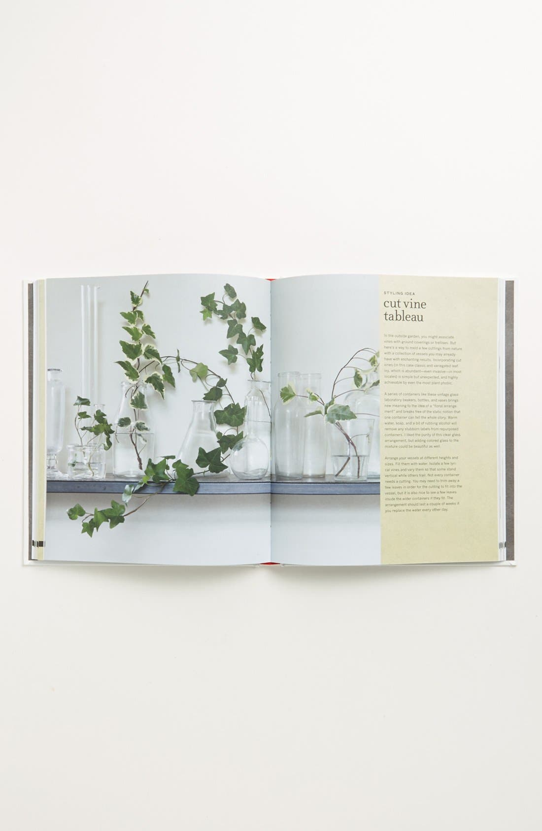 Alternate Image 2  - 'Bring the Outdoors in: Garden Projects for Decorating & Styling Your Home' Book