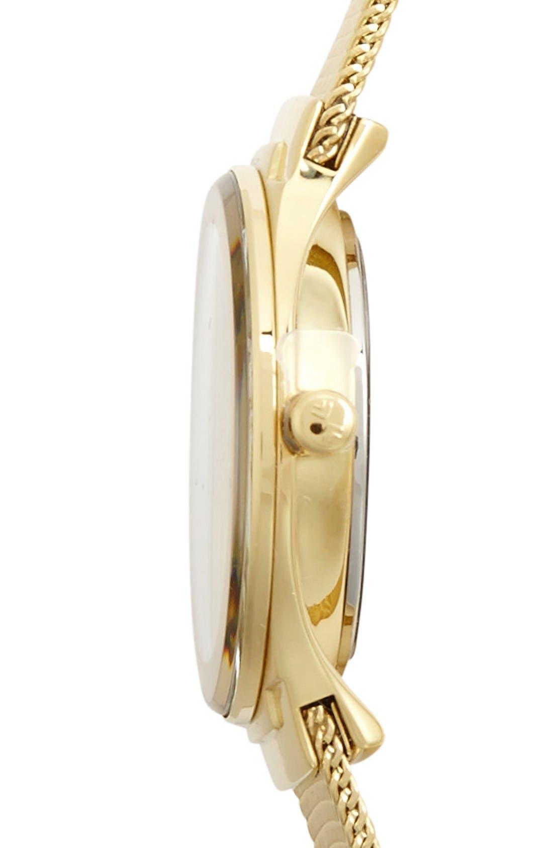 Alternate Image 3  - Skagen Mirror Bezel Mesh Strap Watch, 26mm