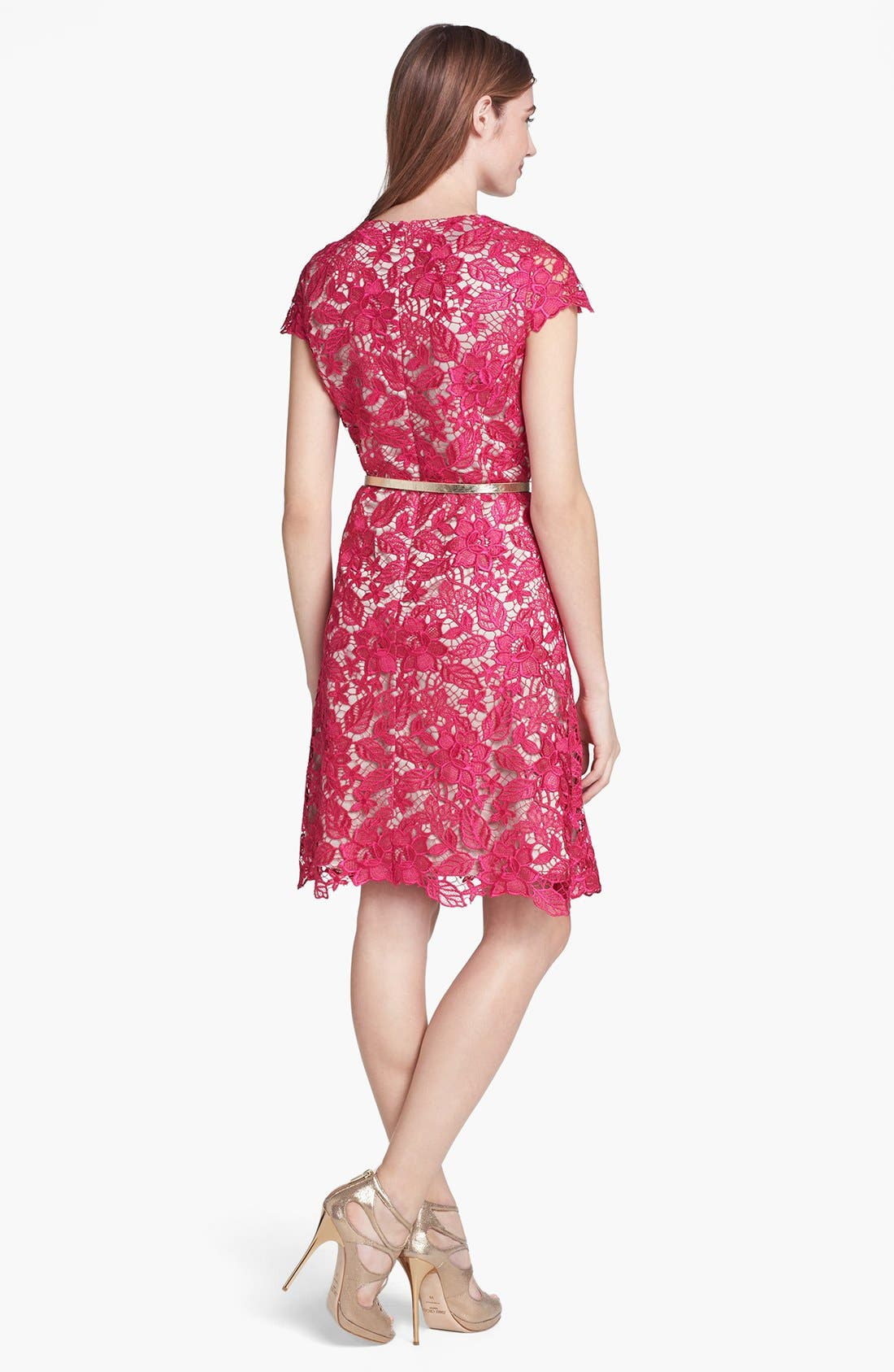 Alternate Image 2  - Eliza J Lace Fit & Flare Dress (Petite)