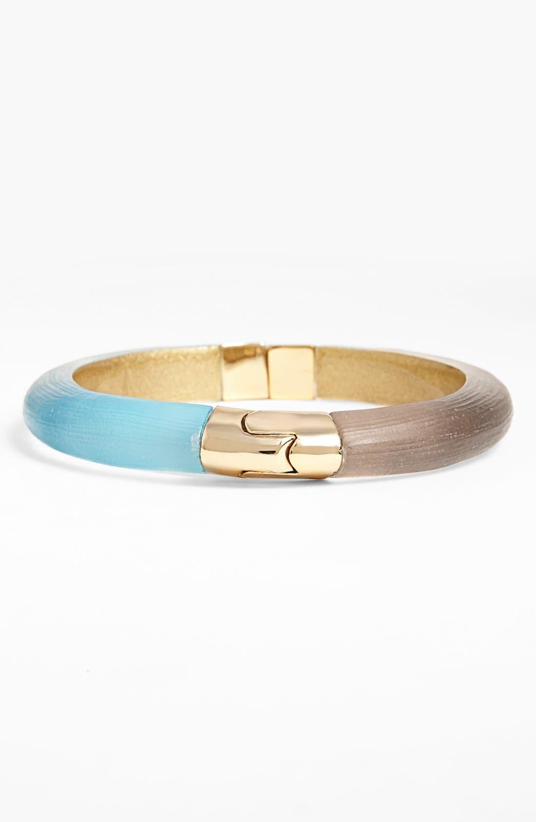 Alternate Image 1 Selected - Alexis Bittar Lucite® Hinged Bangle Bracelet