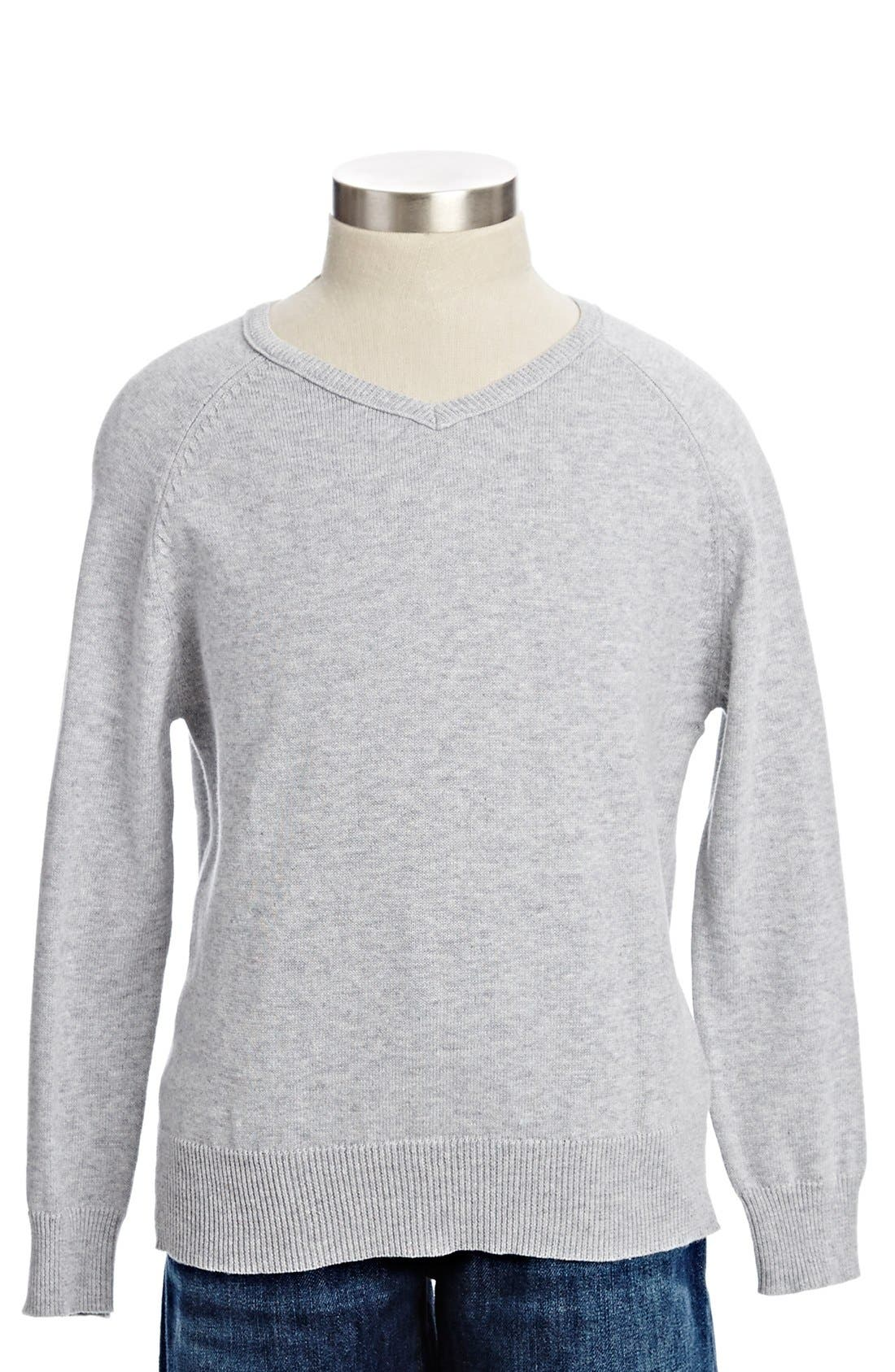 Alternate Image 1 Selected - Peek 'Grant' V-Neck Sweater (Toddler Boys, Little Boys & Big Boys)