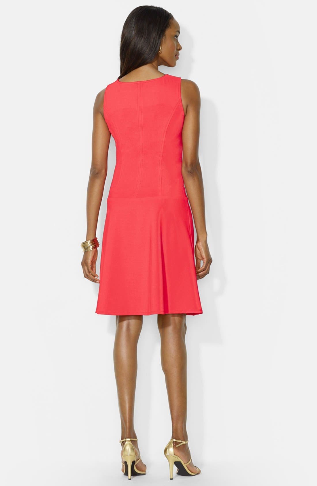Alternate Image 2  - Lauren Ralph Lauren Front Zip Shift Dress (Petite)