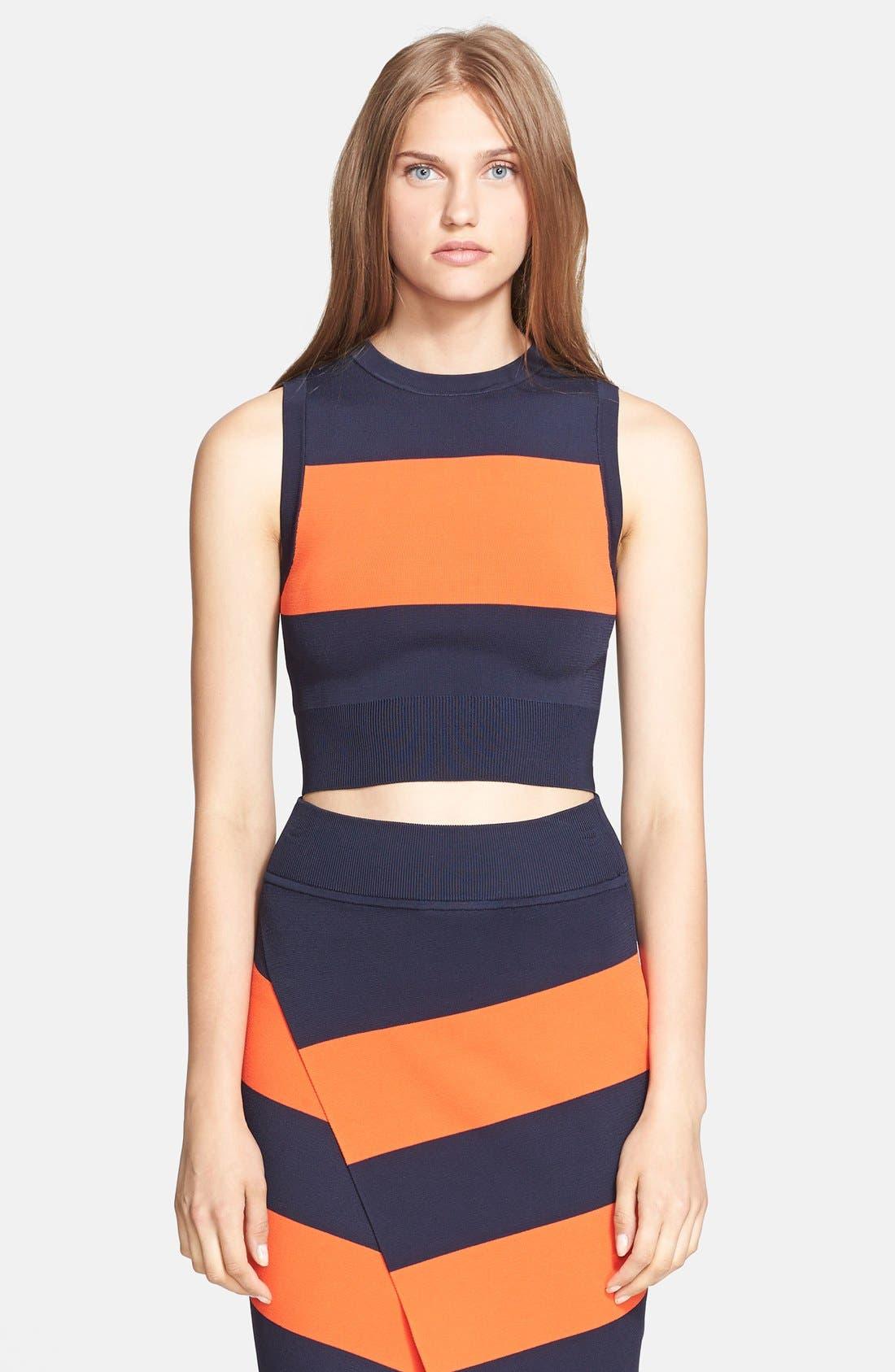 Alternate Image 1 Selected - A.L.C. Stripe Crop Sweater