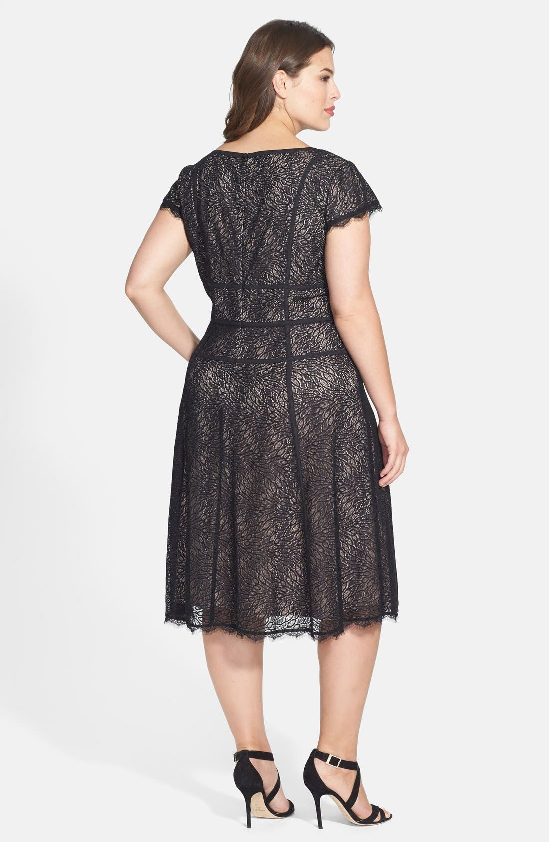 Alternate Image 2  - Adrianna Papell 'Converging' Banded Lace Dress (Plus Size)