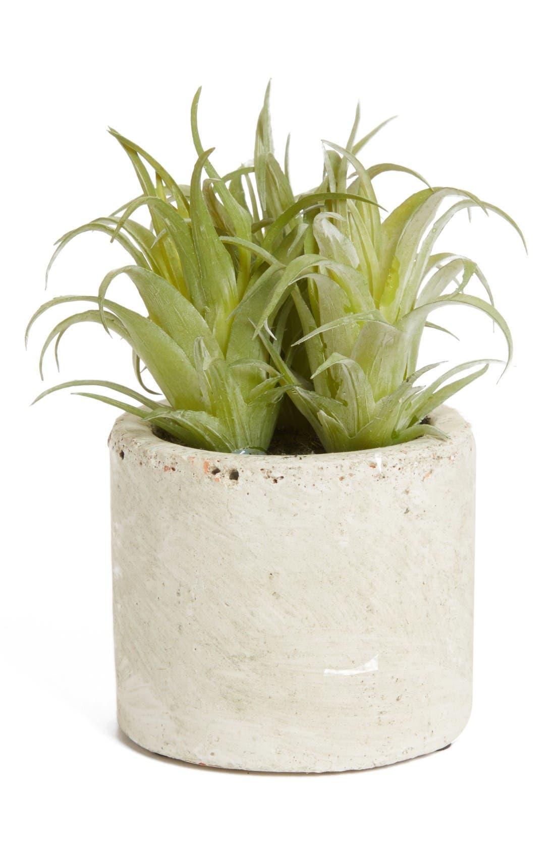 Main Image - ALLSTATE Mini Artificial Succulent