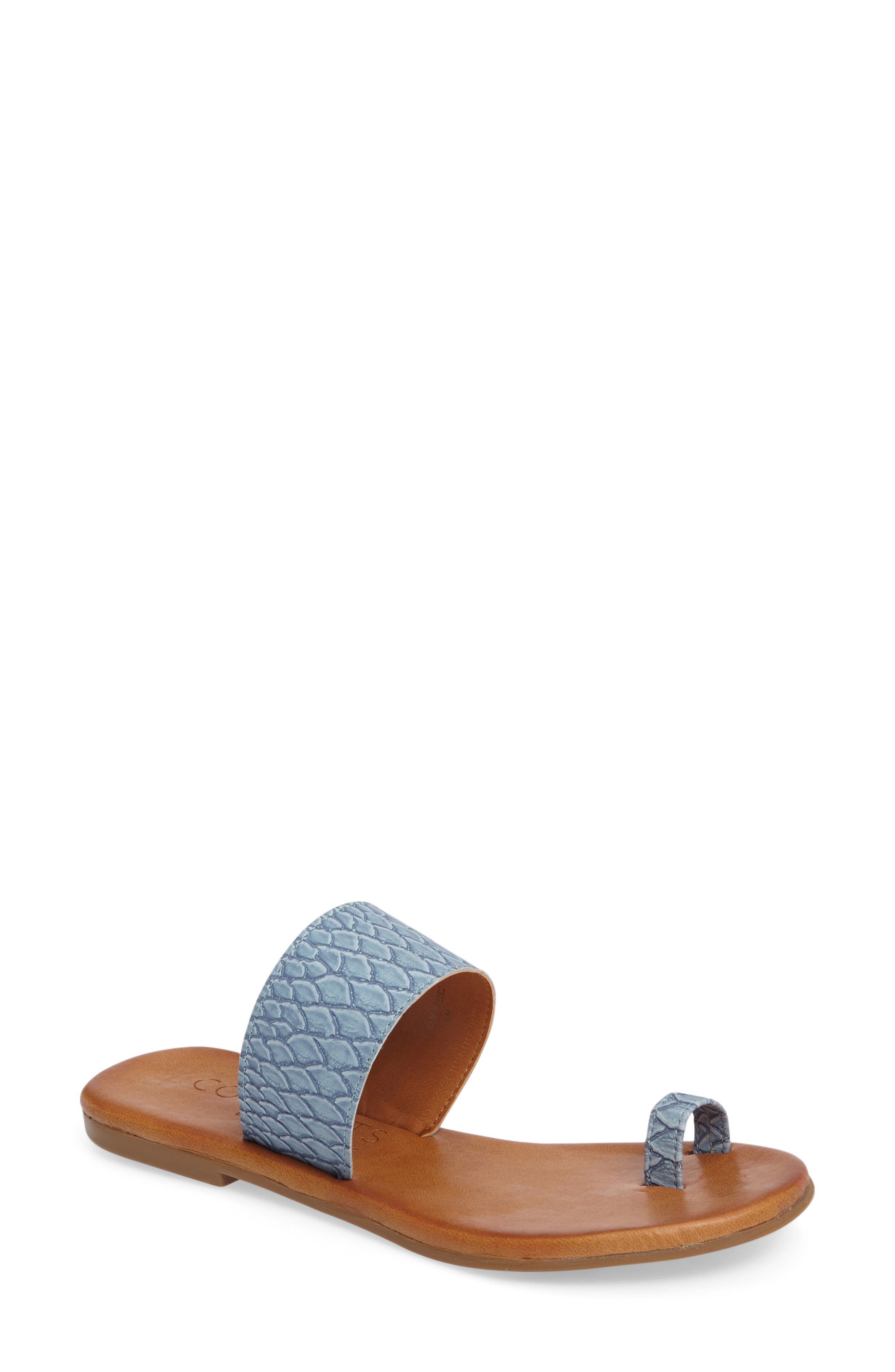 Coconuts by Matisse Freddie Slide Sandal,                         Main,                         color, Dusty Blue Leather