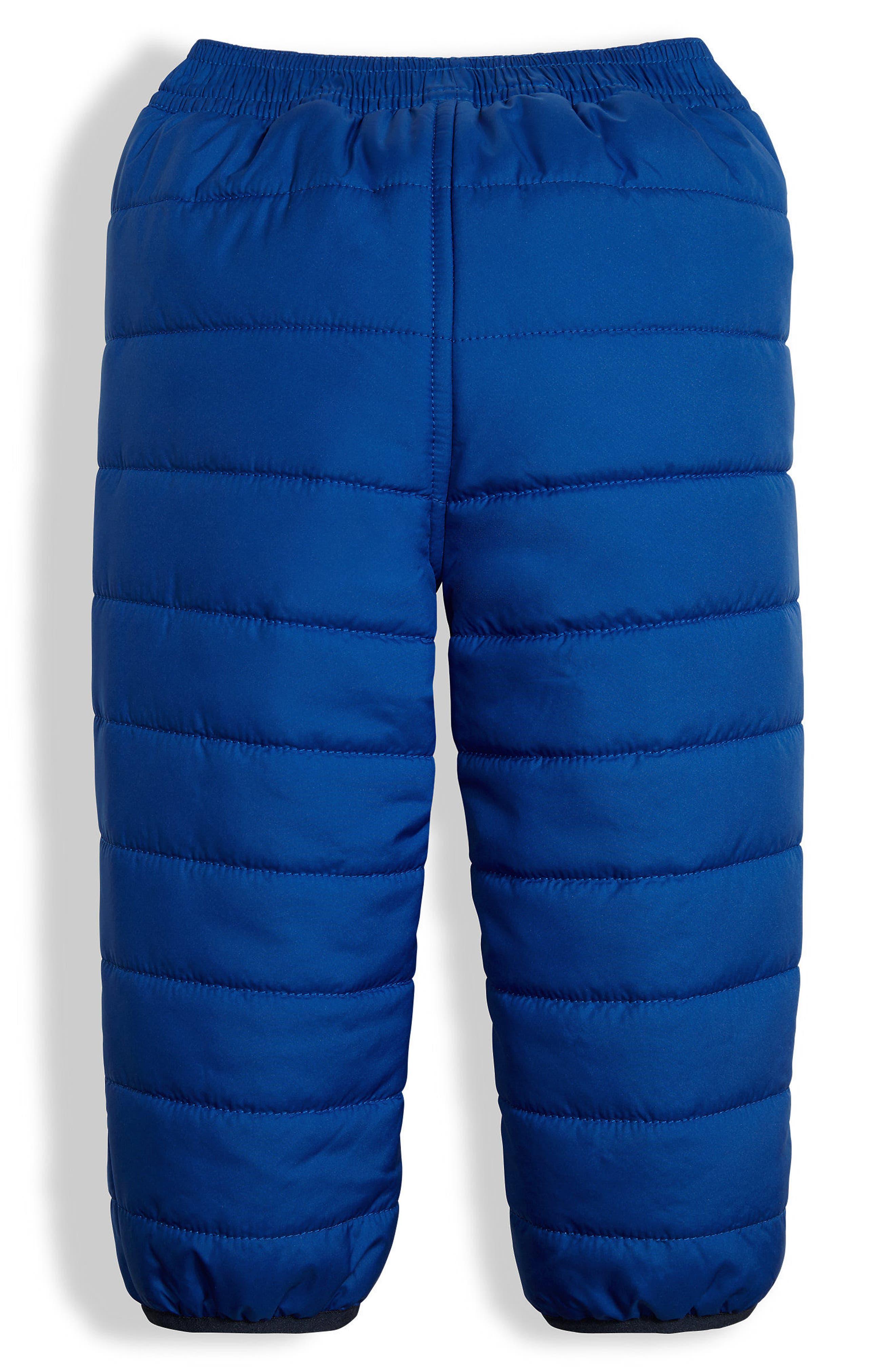 Perrito Reversible Water Repellent Pants,                             Alternate thumbnail 2, color,                             Bright Cobalt Blue