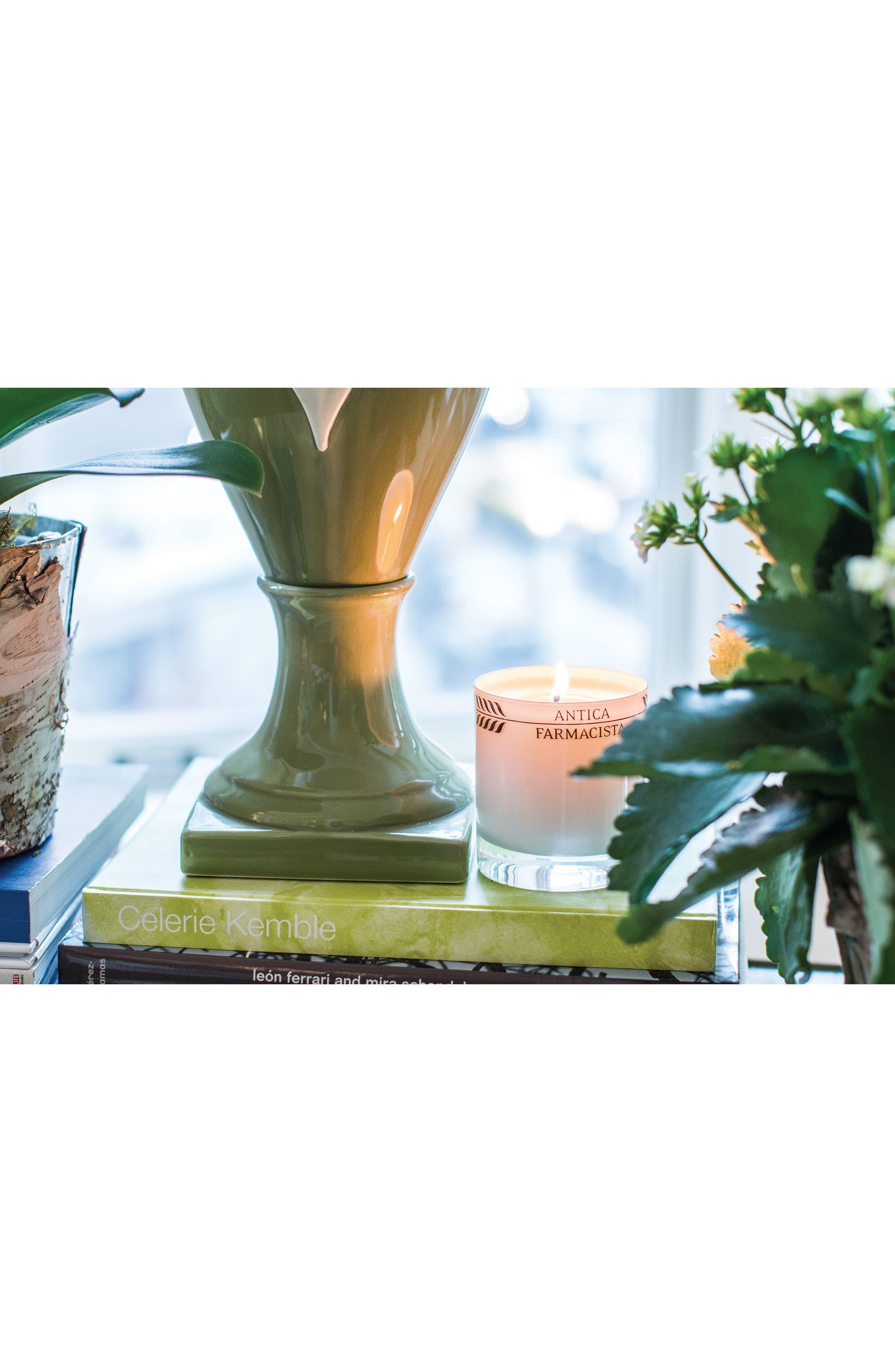 Alternate Image 3  - Antica Farmacista Fig Leaf Candle