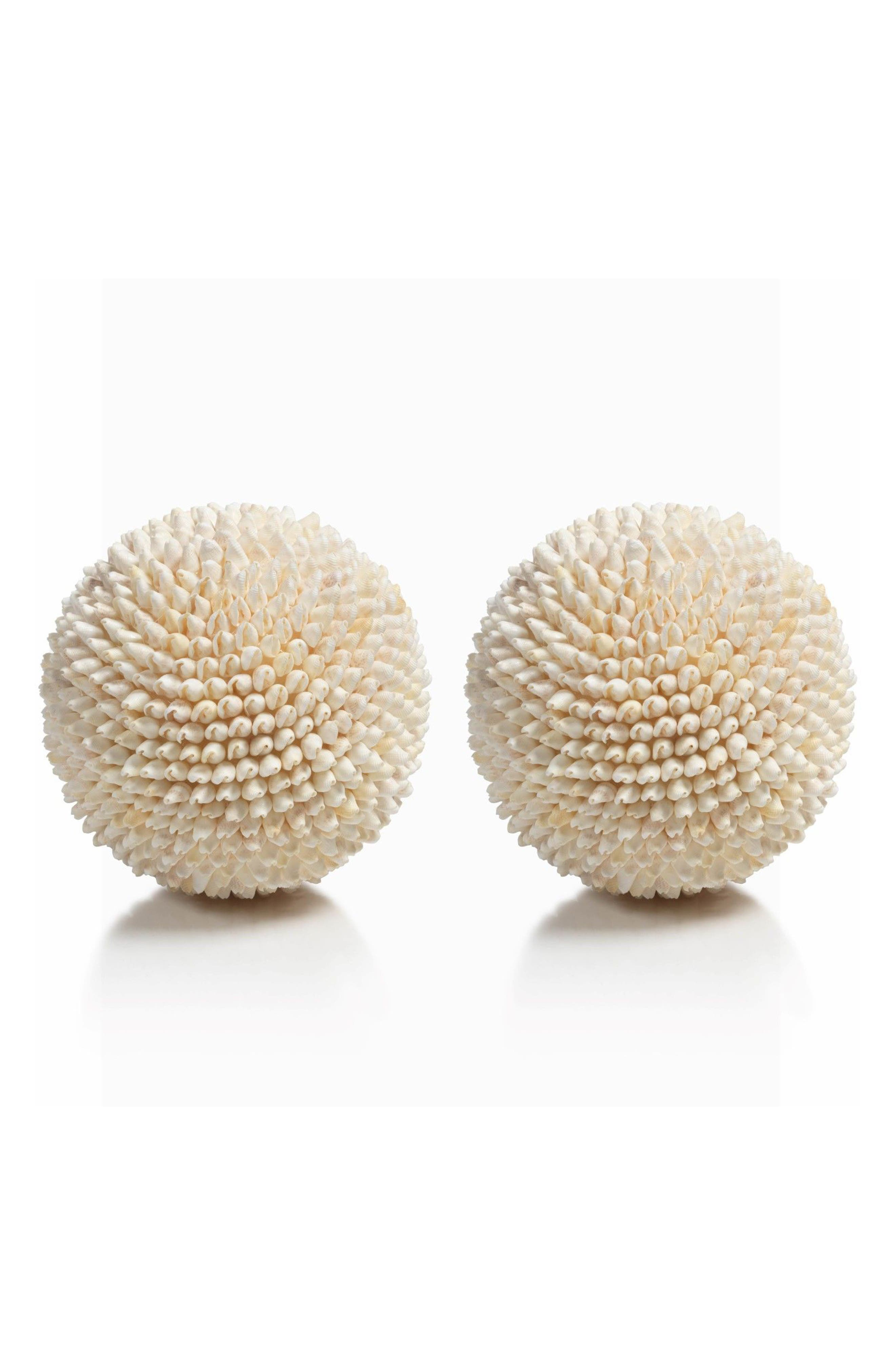 Palay Set of 2 Shell Decorations,                         Main,                         color, Beige