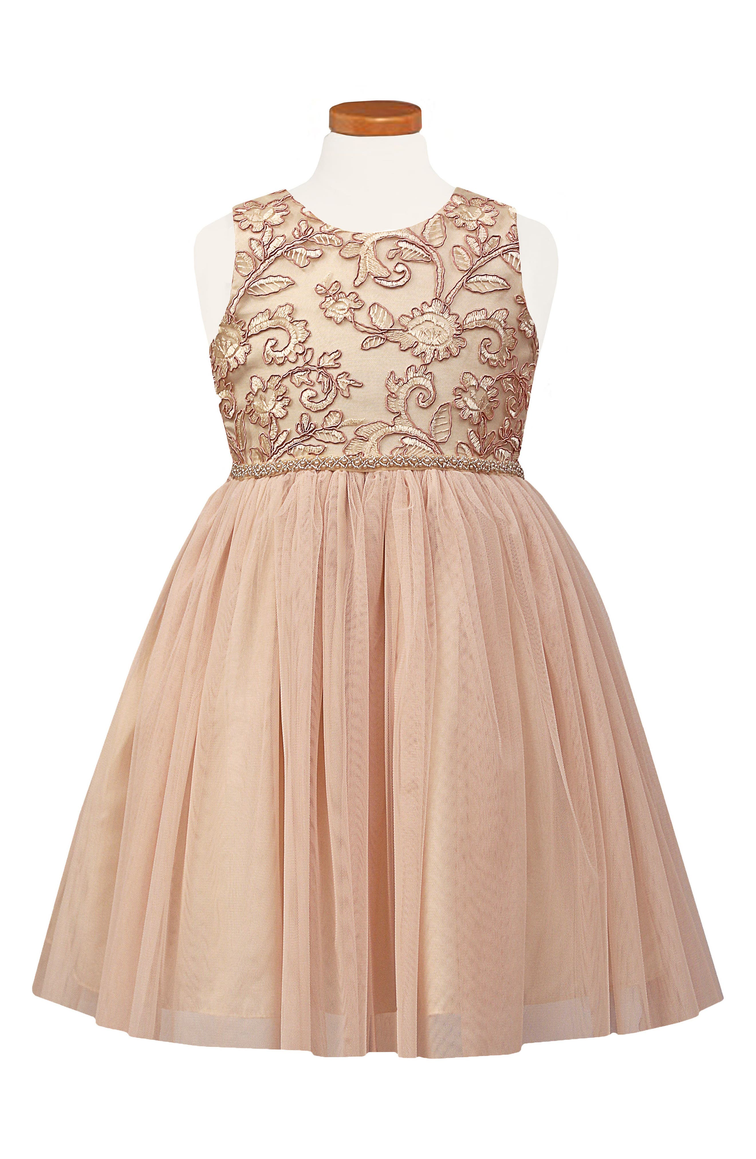 Embroidered Tulle Dress,                         Main,                         color, Blush